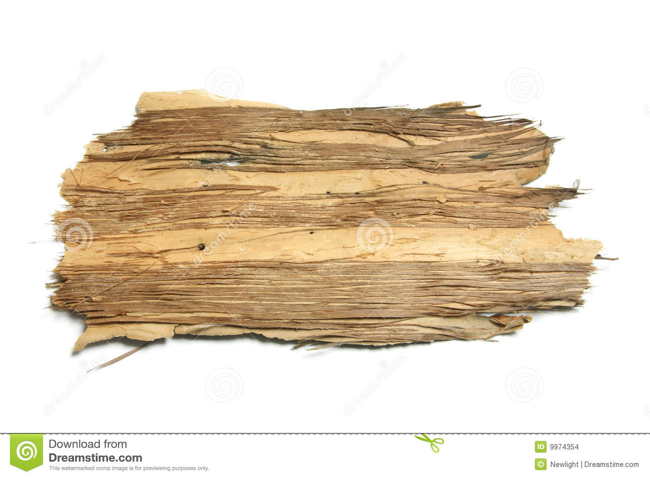 piece of tree bark stock photo image of grain studio