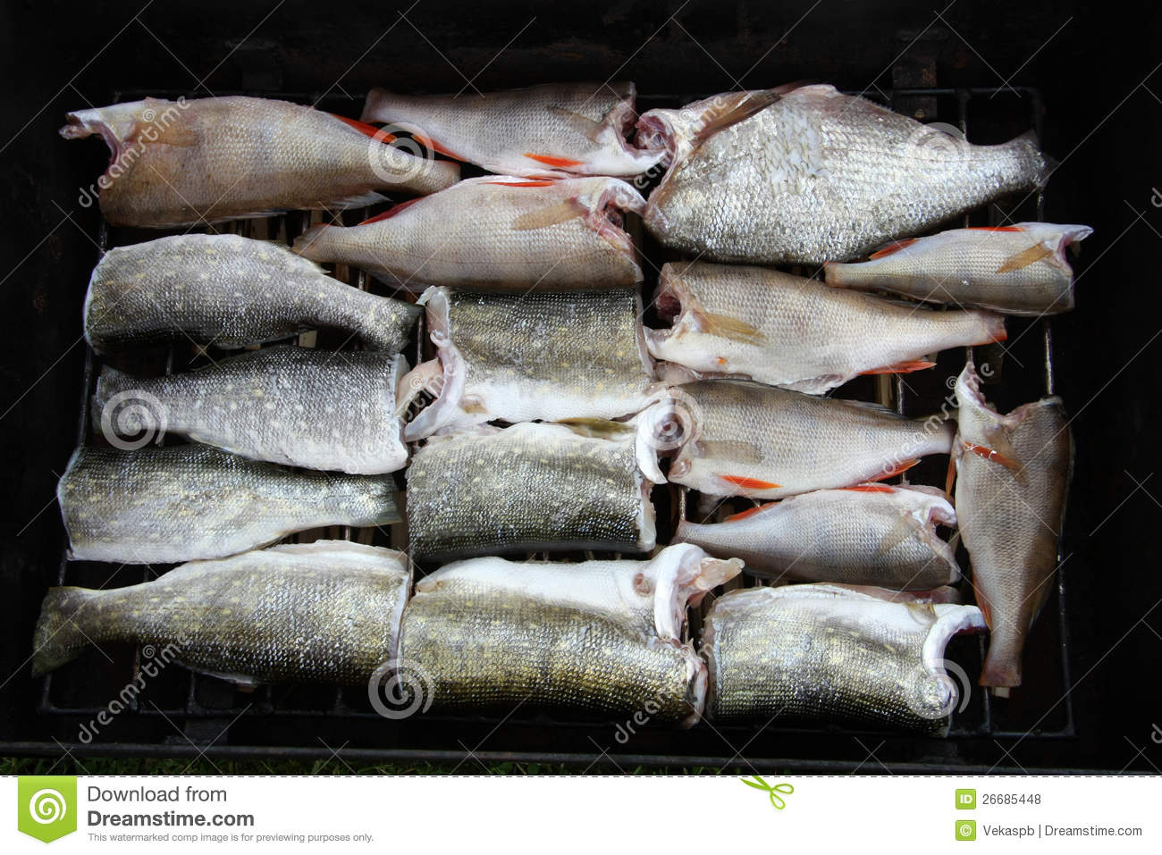 Pieces of fish royalty free stock photos image 26685448 for Piece of fish