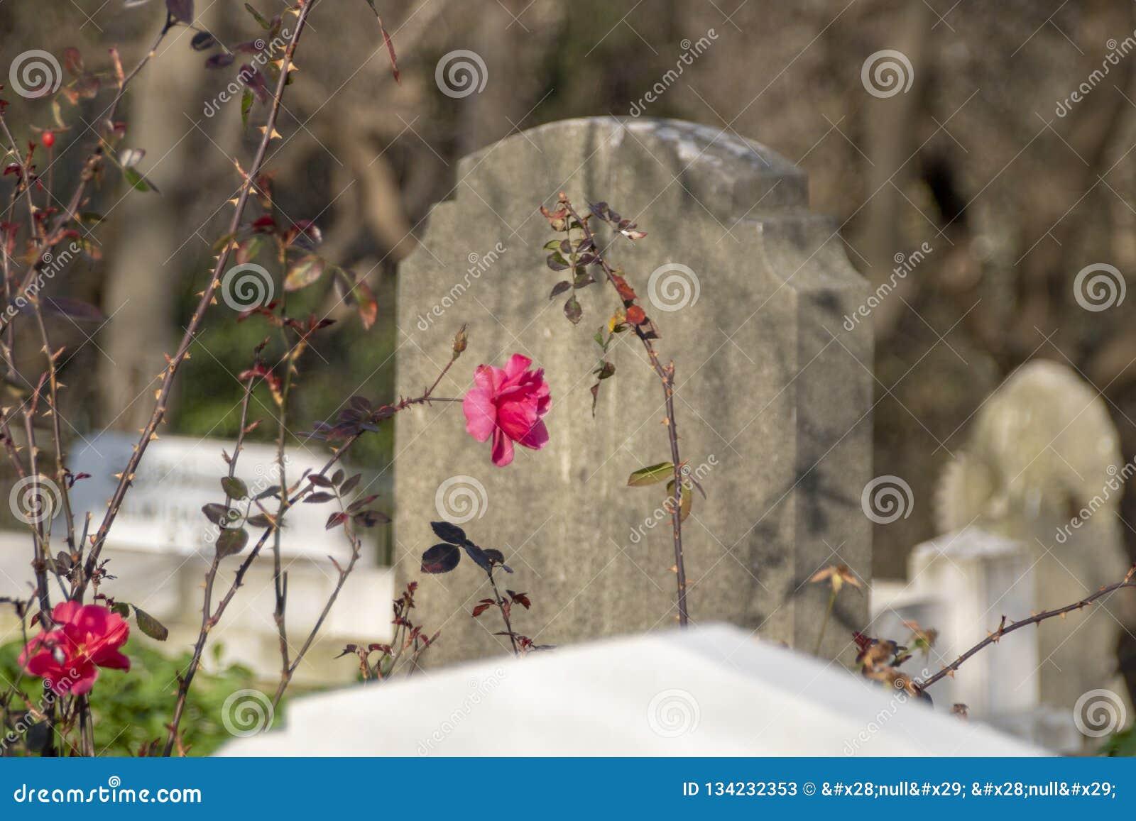 Piedra de la tumba antigua, el período de Ottoman, Turquía