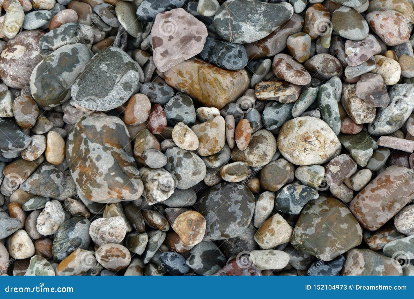 Piedras coloridas del río bajo la lluvia