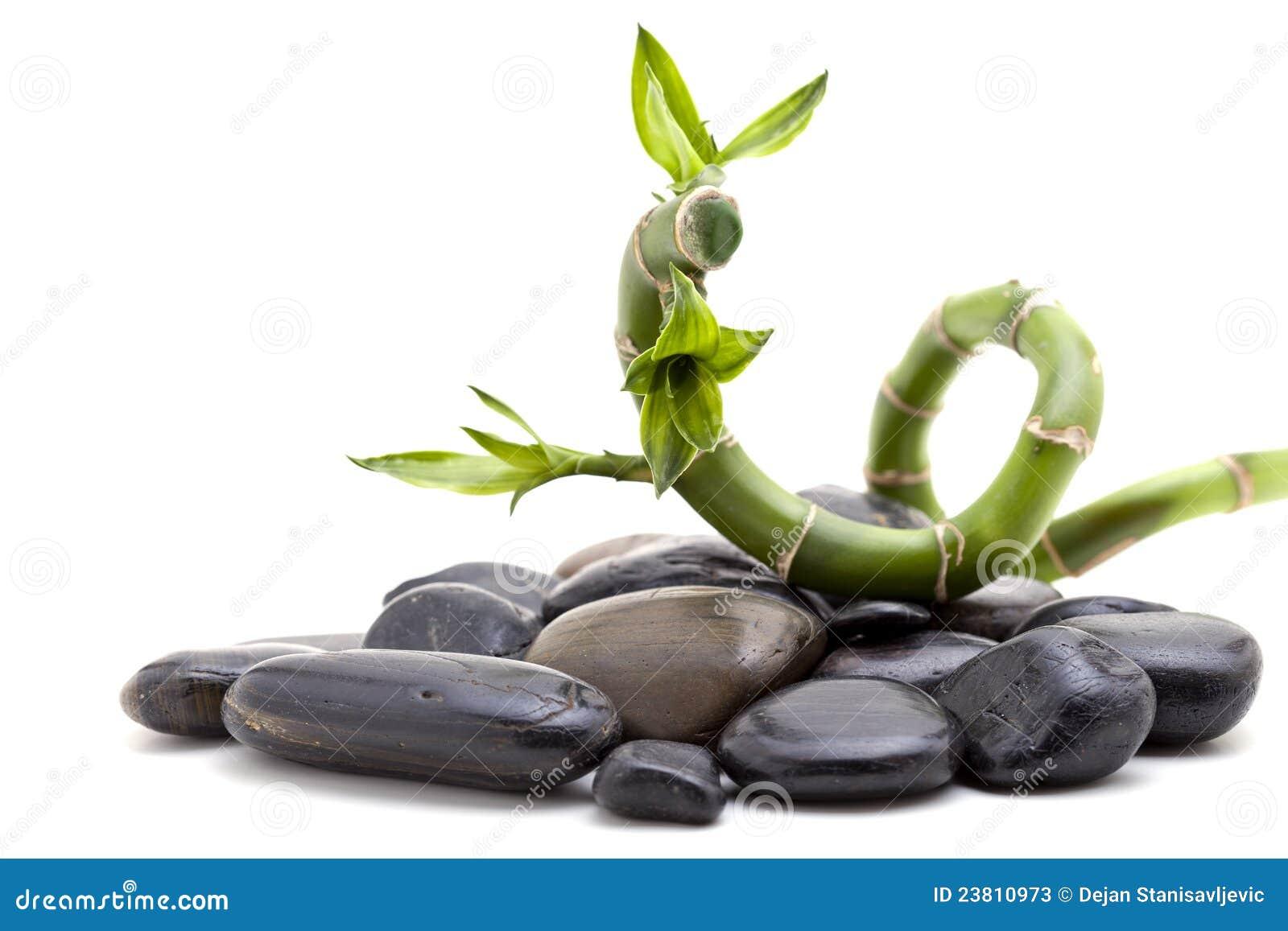 Piedras del zen con la planta de bamb imagen de archivo for Imagenes zen