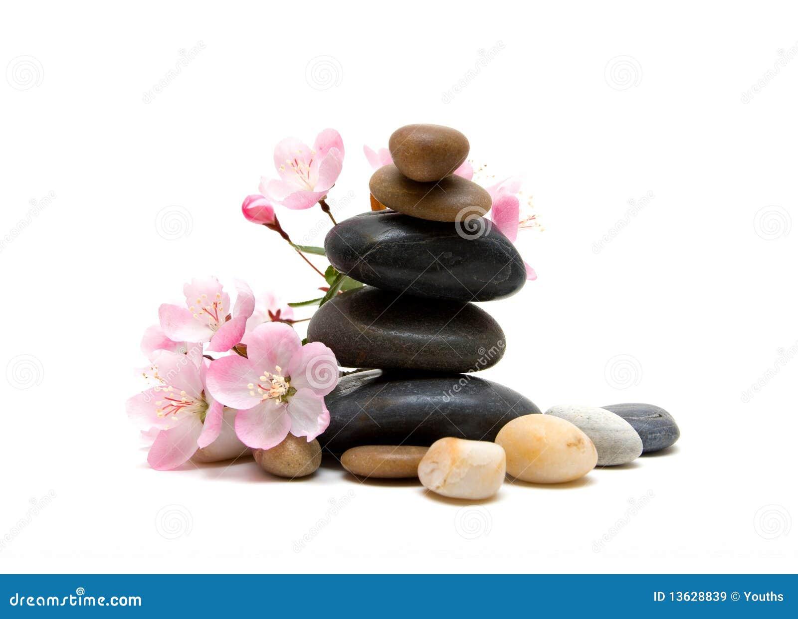 Piedras del zen del balneario con las flores im genes de for Fotos piedras zen