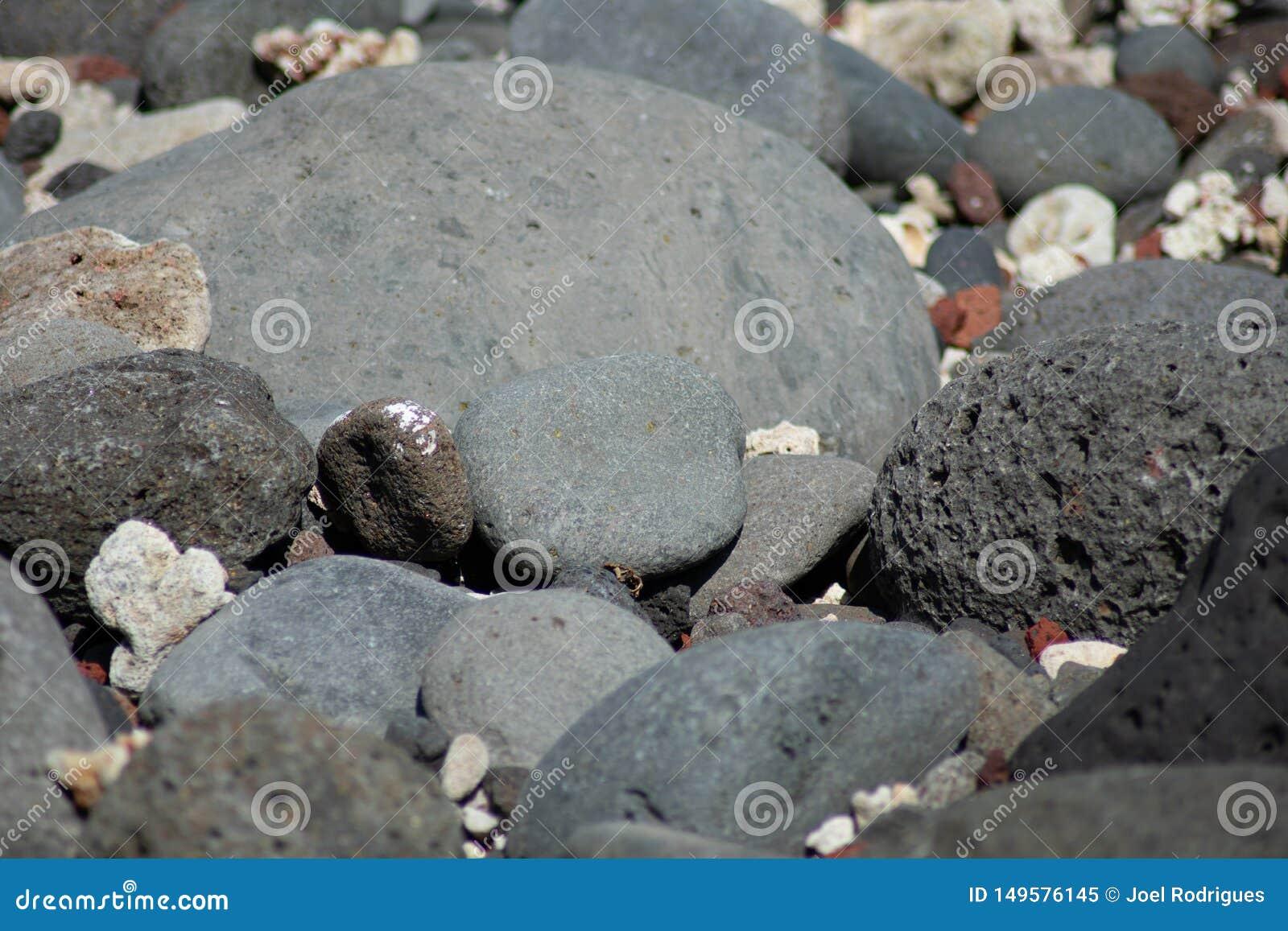 Piedras volc?nicas negras en la playa tropical soleada