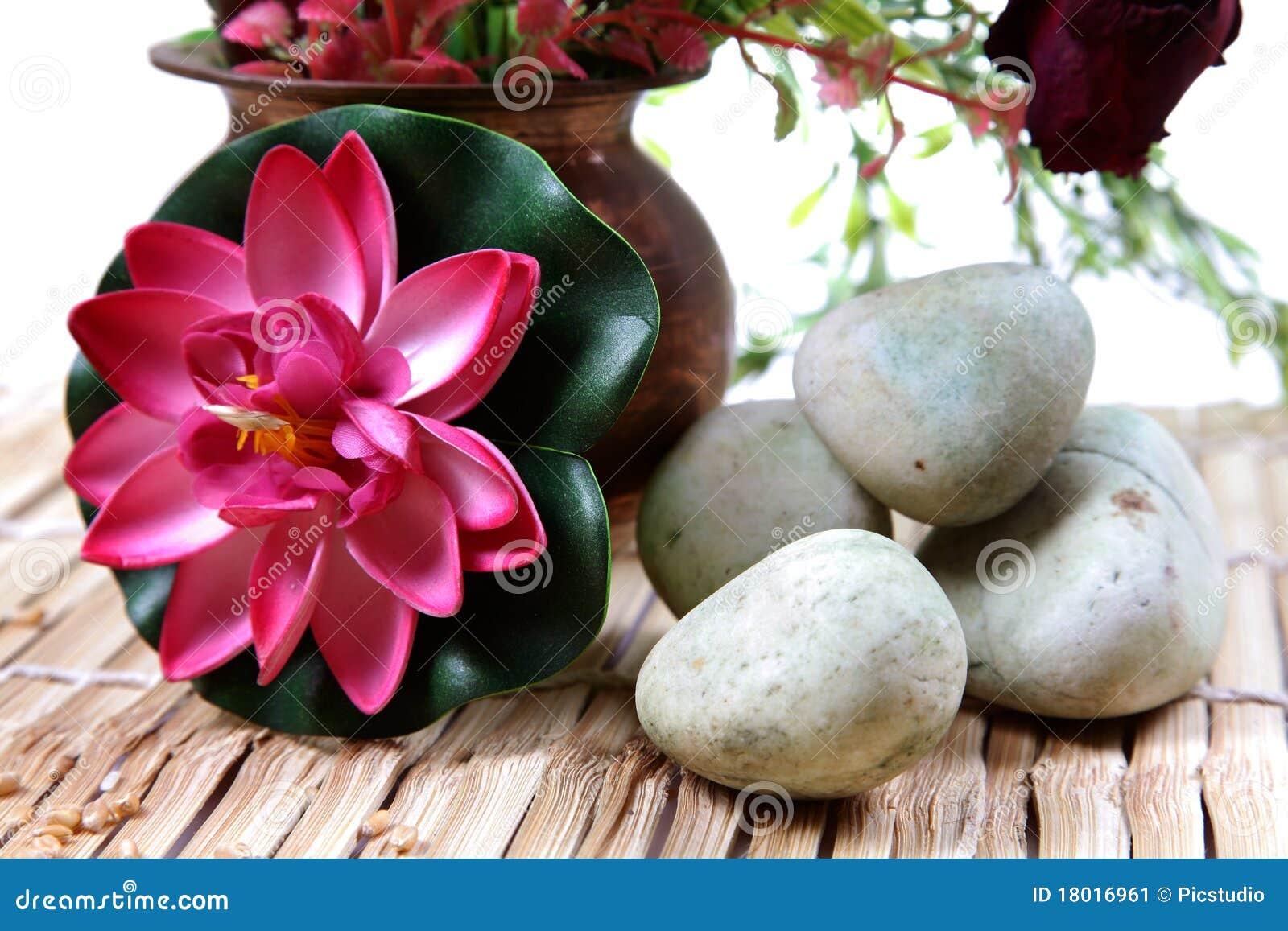 Piedras y flor del balneario