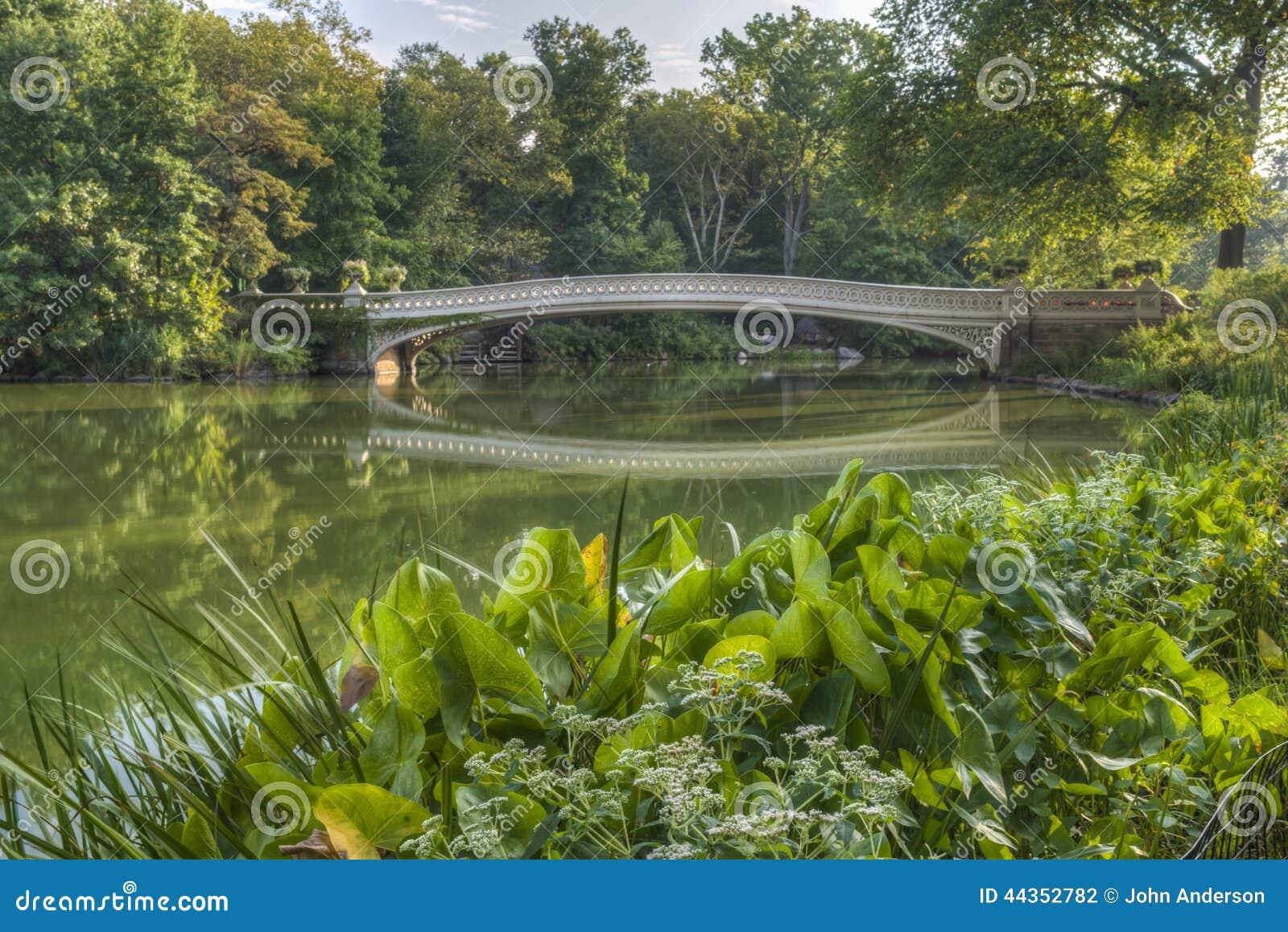 Pieghi il ponte