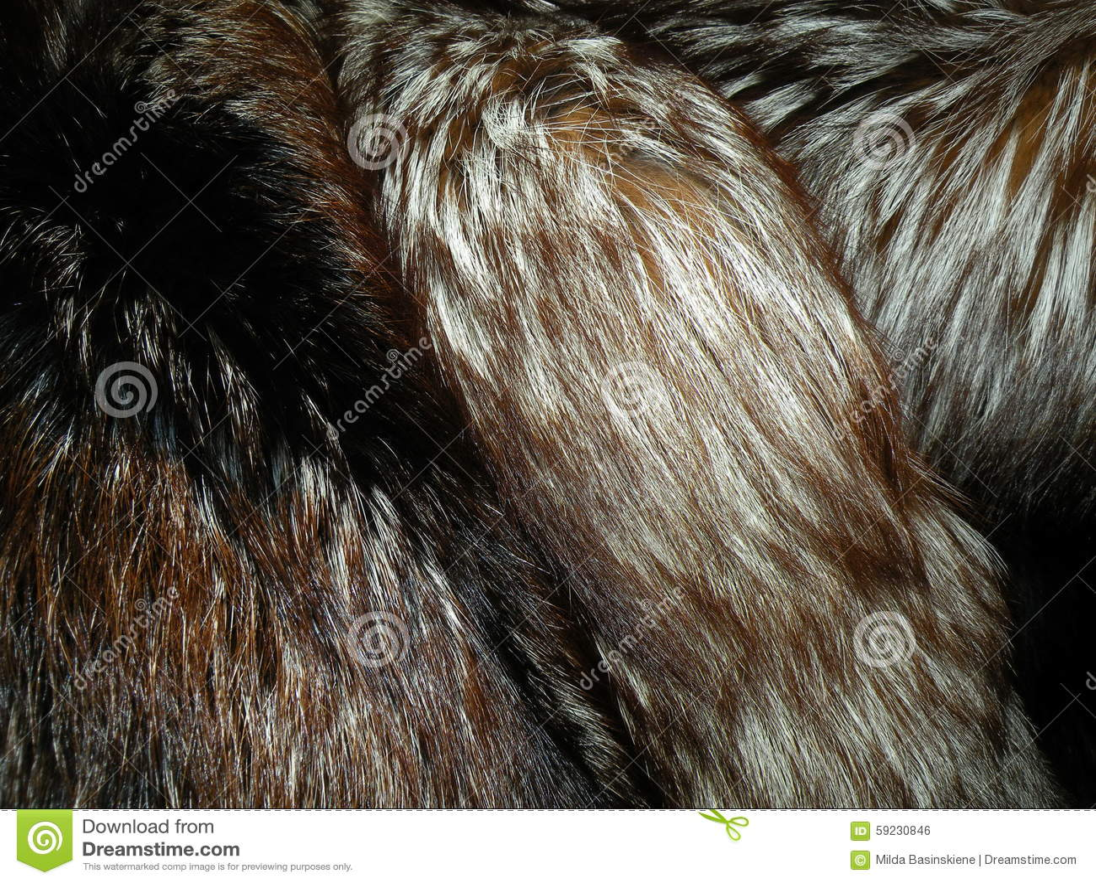 Download Piel de zorro natural foto de archivo. Imagen de coloreado - 59230846