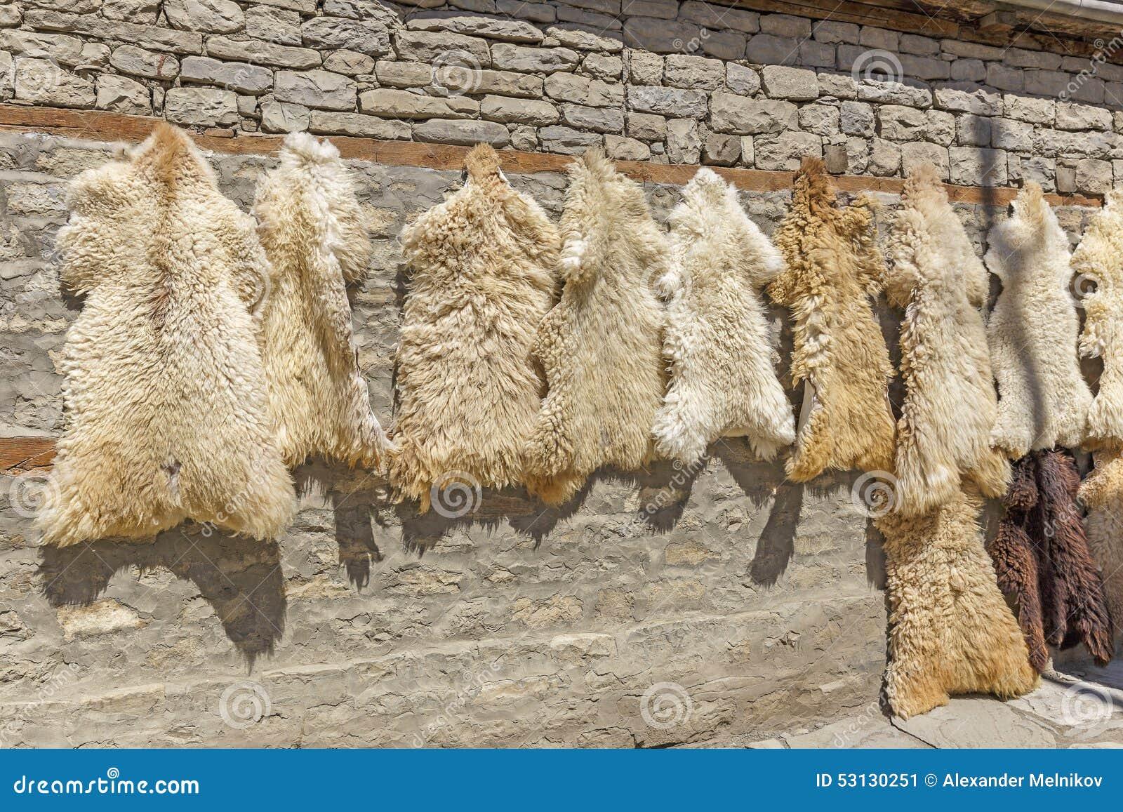 Pieles de las ovejas en venta en el pueblo lahij - Pieles de oveja ...