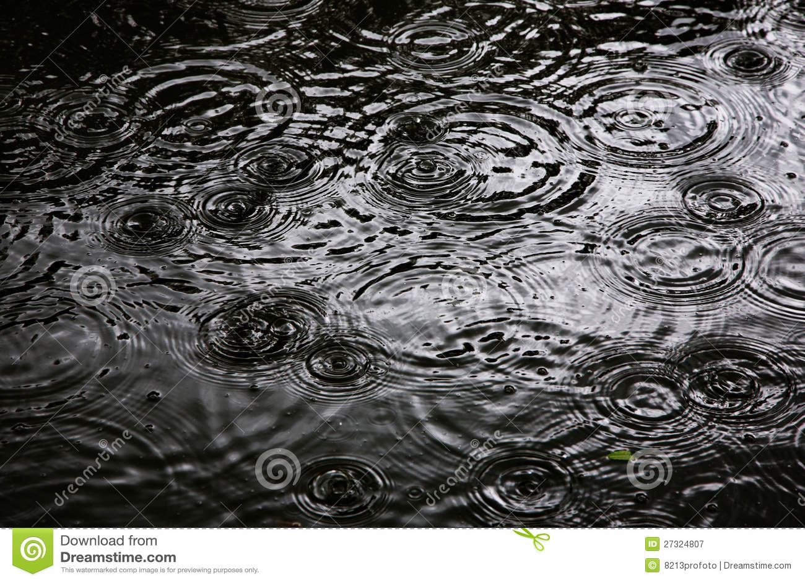 Pierścionki wodna czochra, Czochra na wodzie