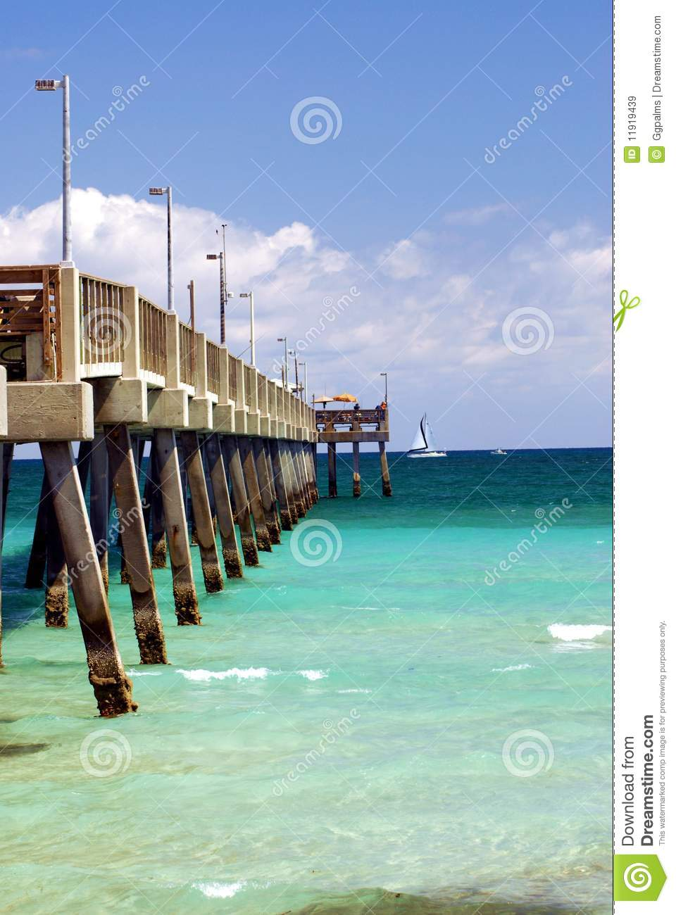 At the pier in florida royalty free stock images image for Florida free fishing days