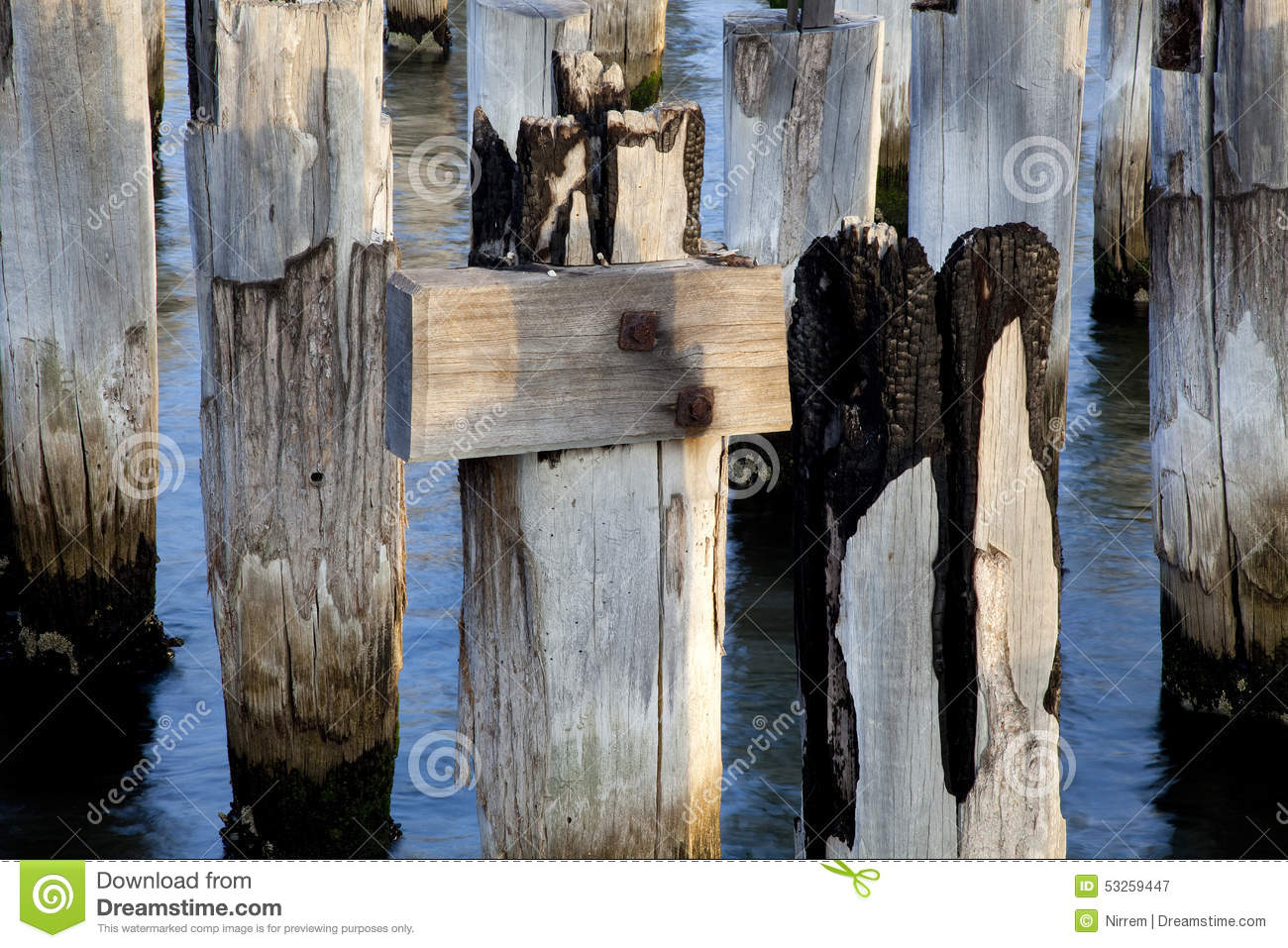 Pier post close up stock image  Image of piles, seaside