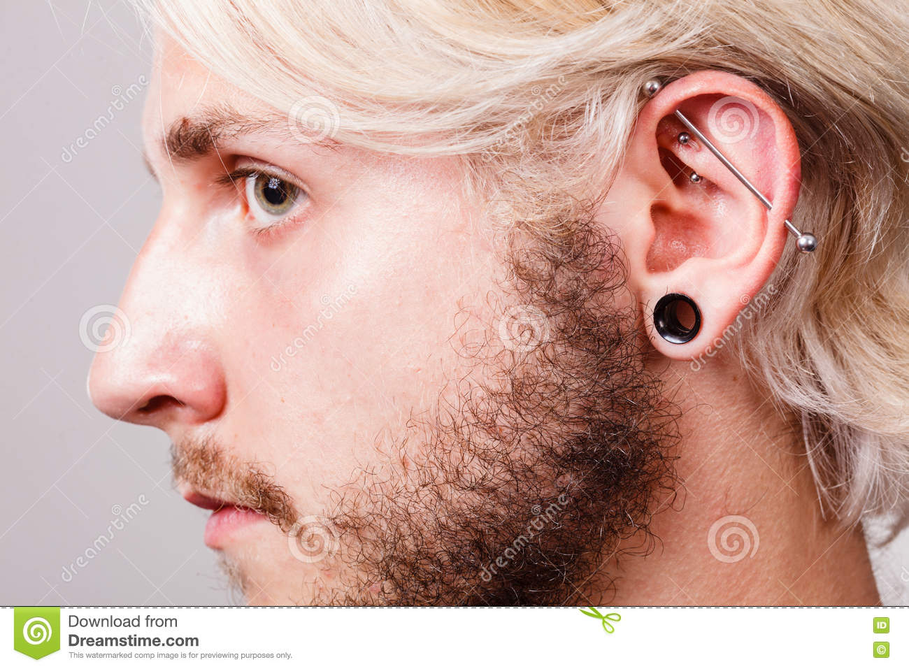 6cae52c60 Pierced Man Ear, Black Plug Tunnel, Industrial And Rook Stock Photo ...