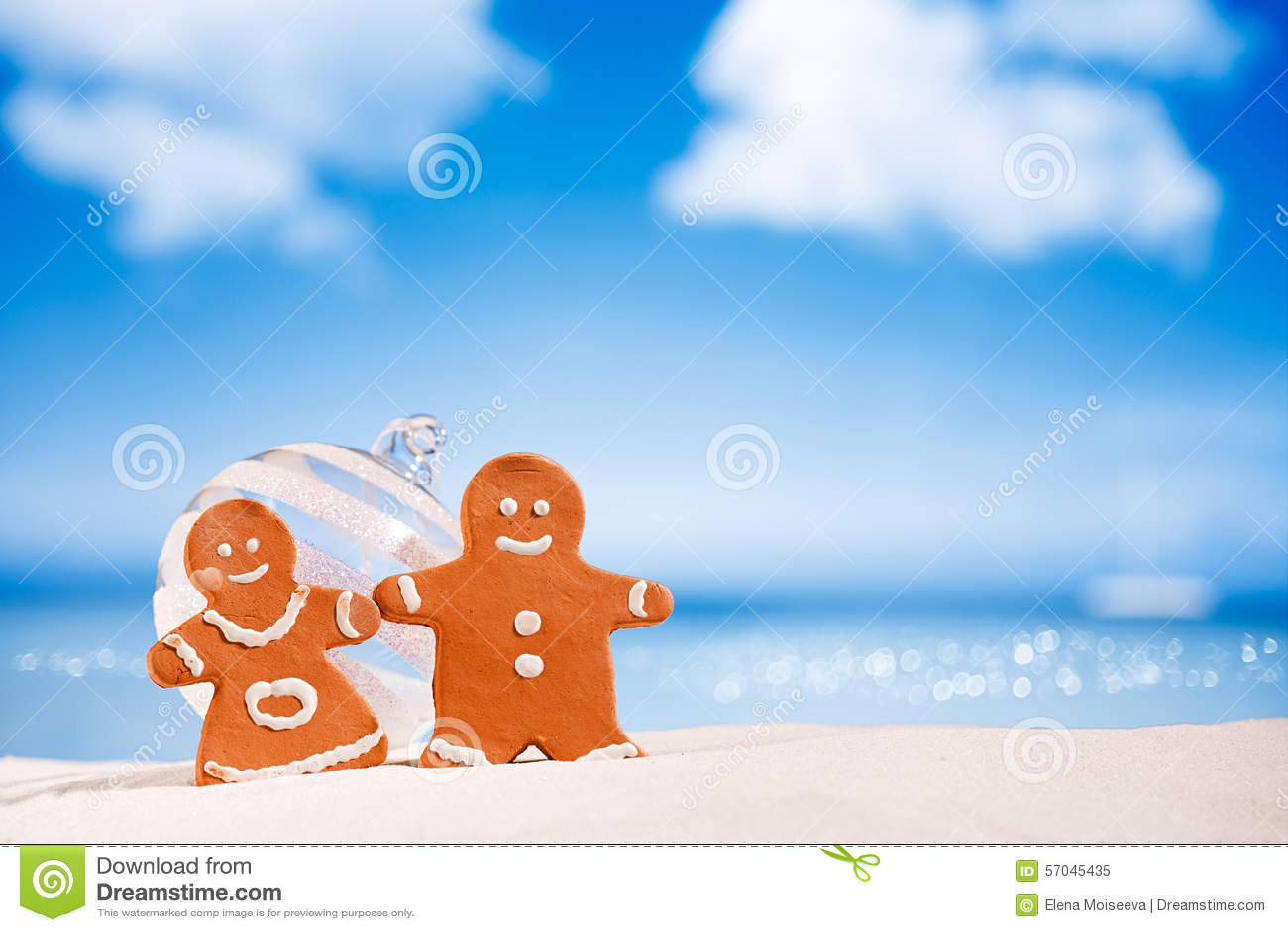 Piernikowa chłopiec i dziewczyna na plaży z seascape tłem