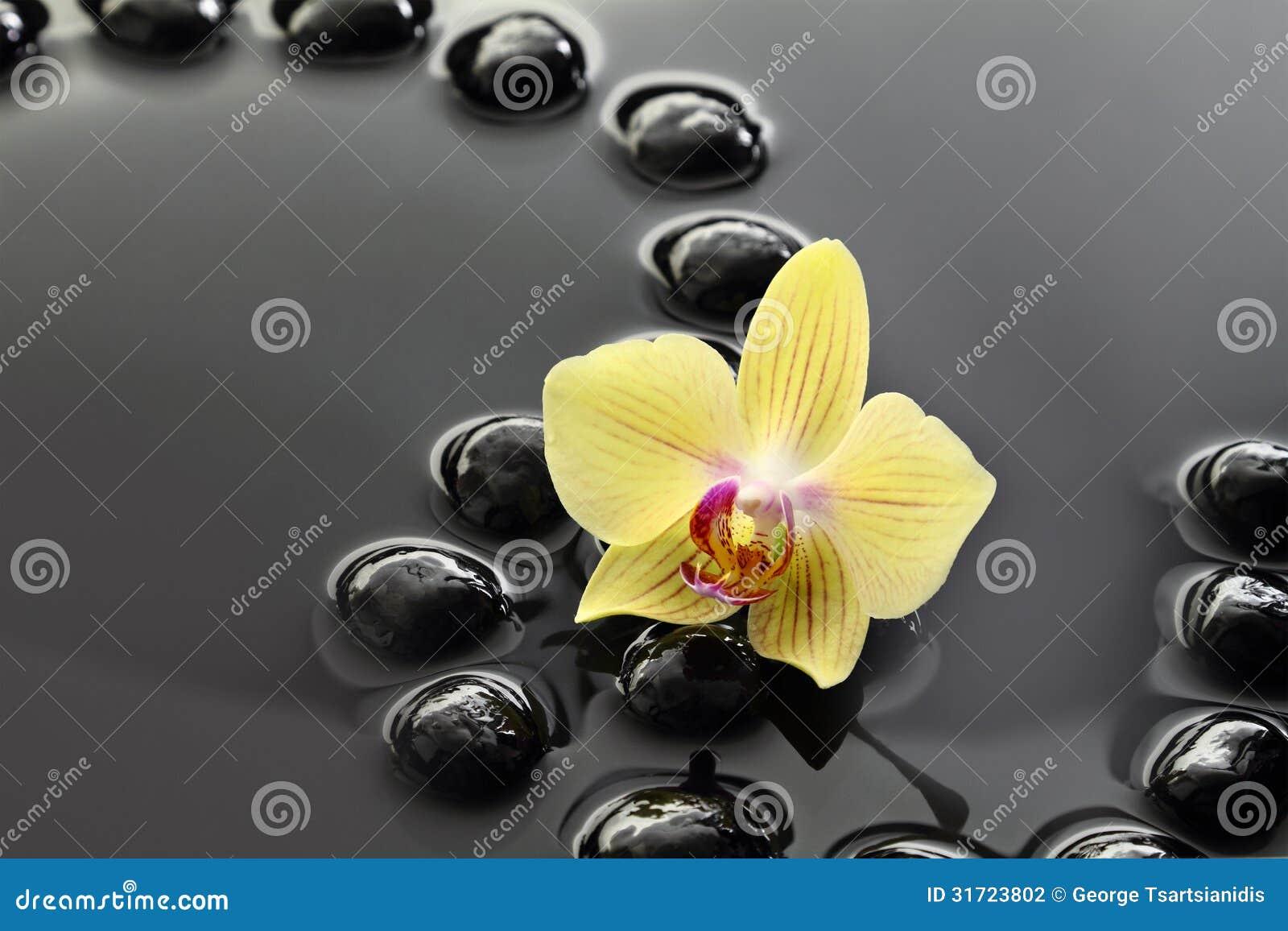 pierres de zen et fleur noires d'orchidée photographie stock