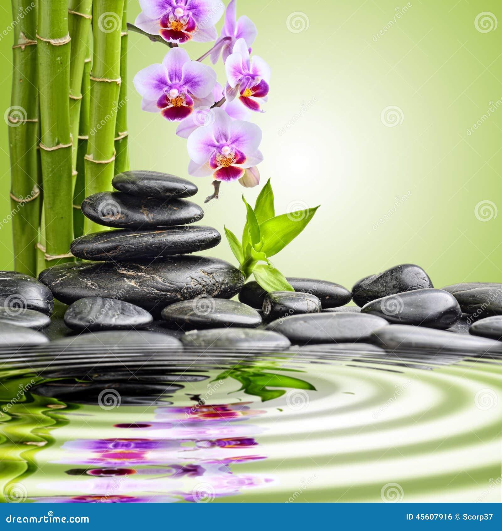 Pierres et bambou de zen photo stock image du baisses for Image galet zen