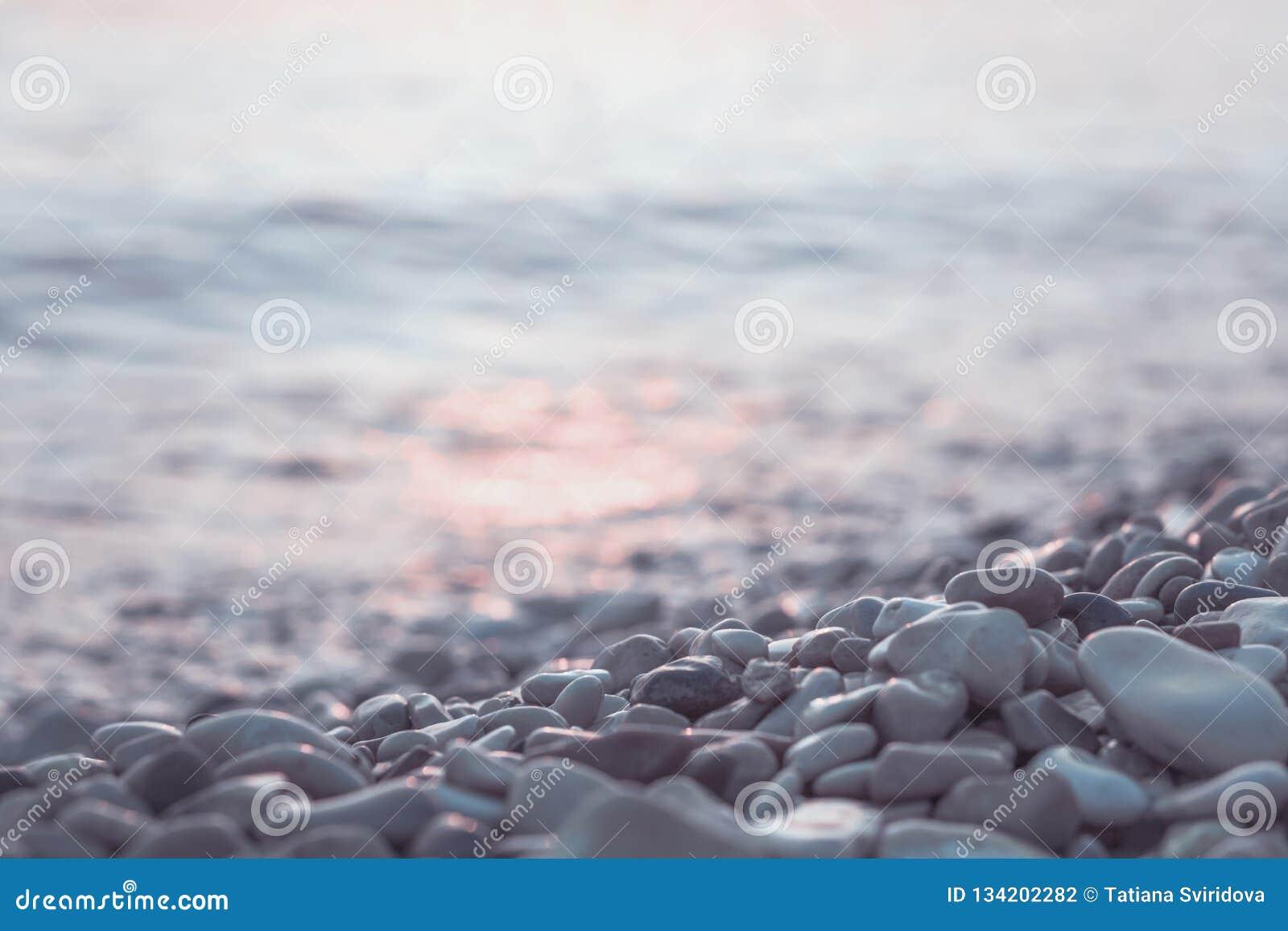 Pierres et eau humides de caillou au bord de la mer de matin