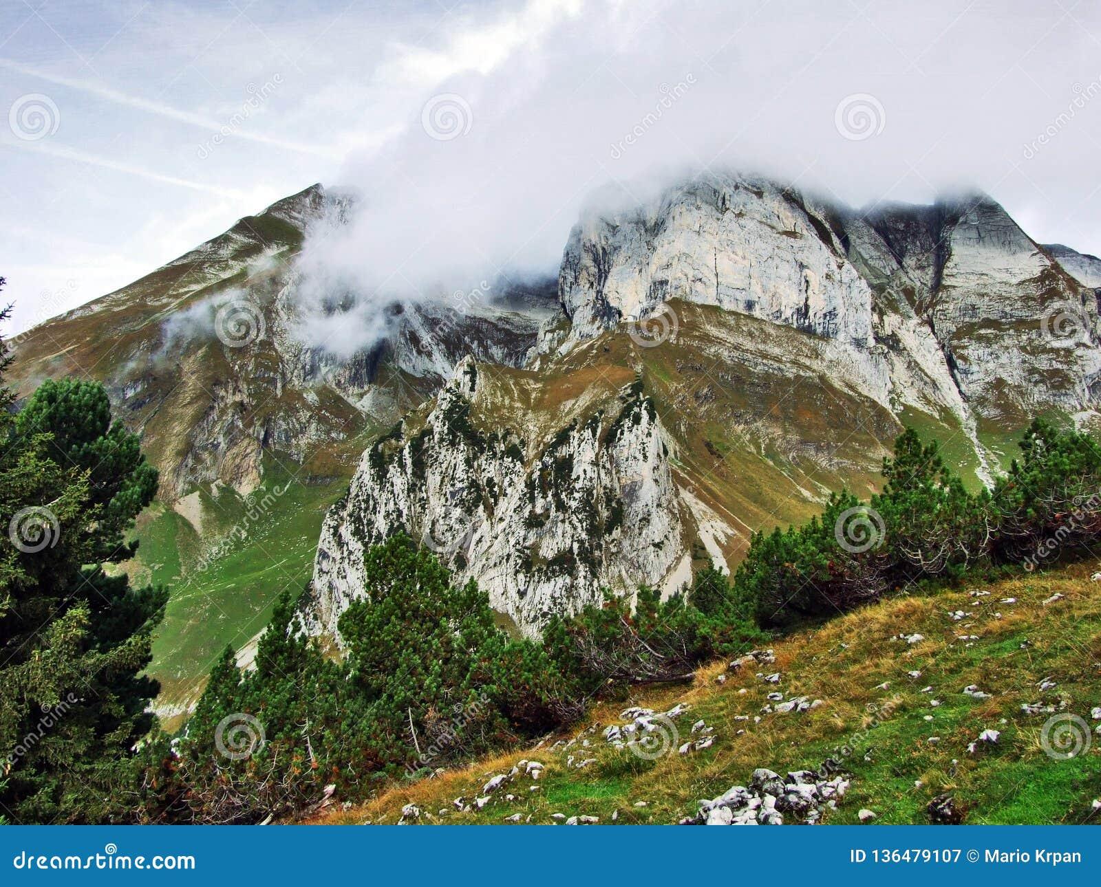 Pierres et roches du massif Alpstein de montagne