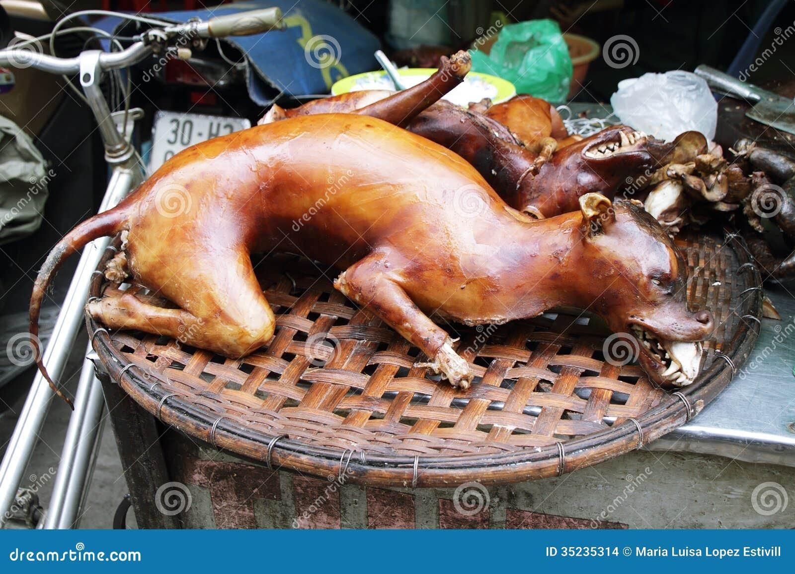Pies gotujący