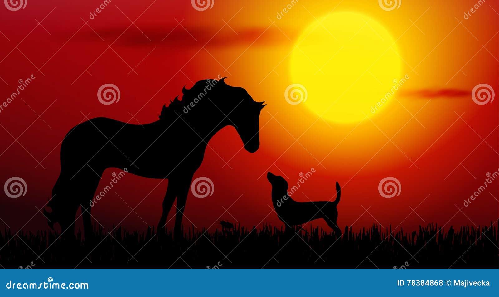 Pies i koń