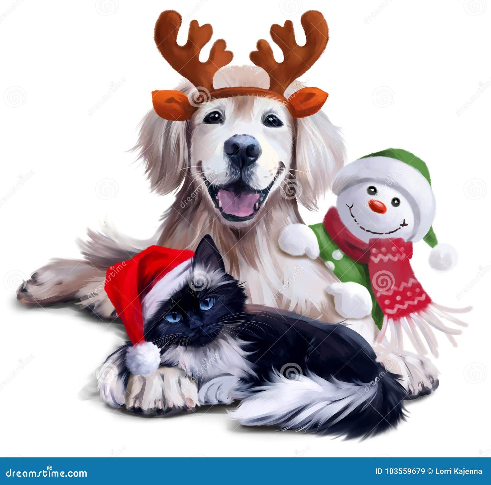 Pies, kot i bałwan,