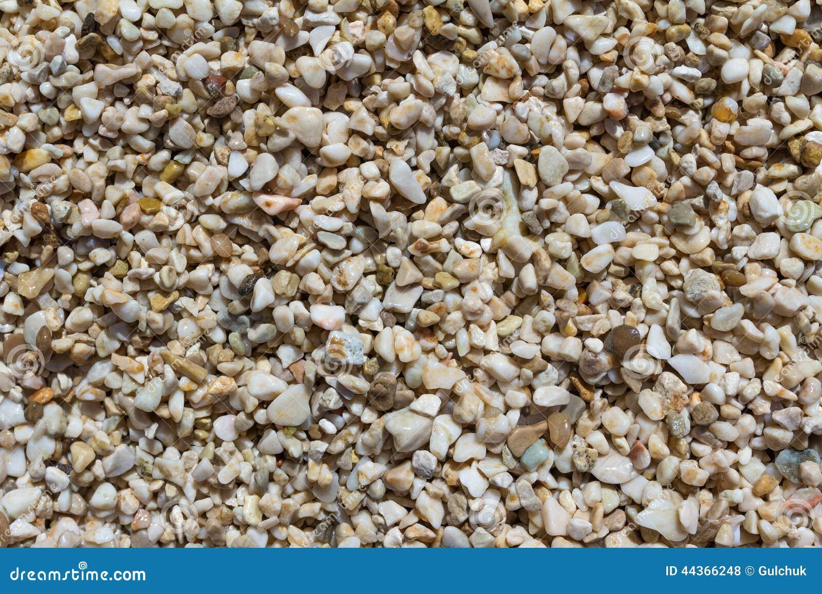 Pietre bagnate su una spiaggia