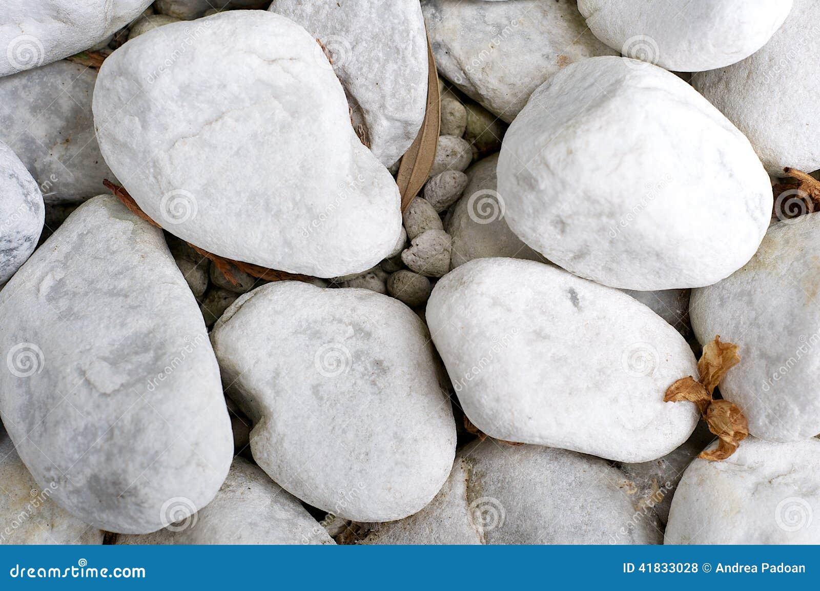 Pietre bianche del ciottolo fotografia stock immagine for Pietre bianche giardino