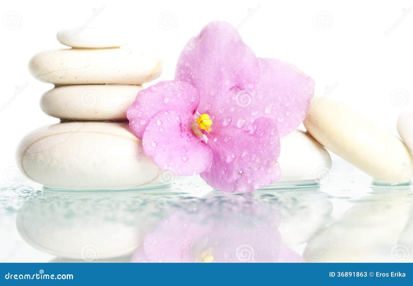 Download Pietre Bianche Della Stazione Termale Su Bianco Con Il Fiore Immagine Stock - Immagine di petali, alternativa: 36891863