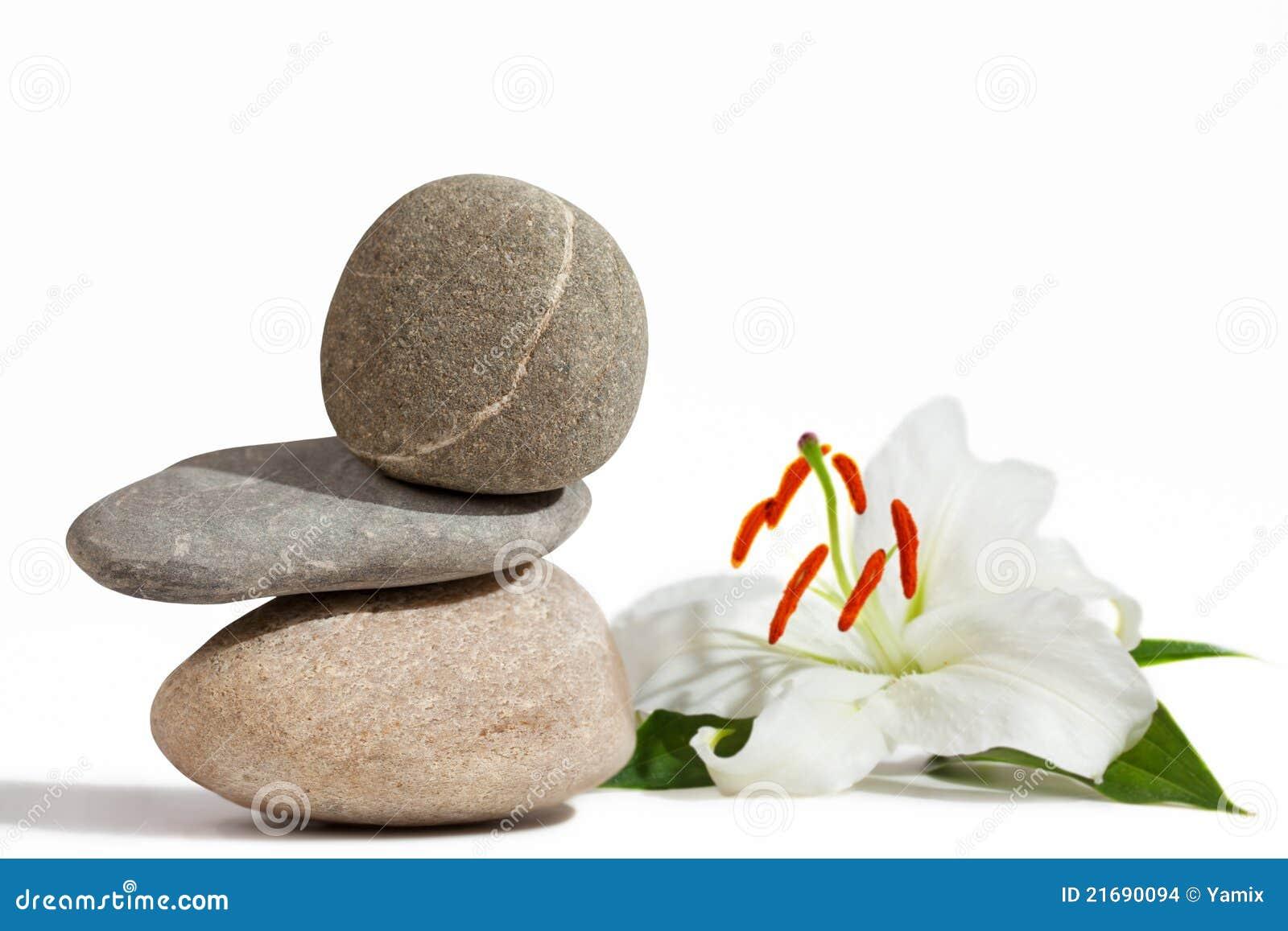 Pietre d equilibratura e giglio bianco