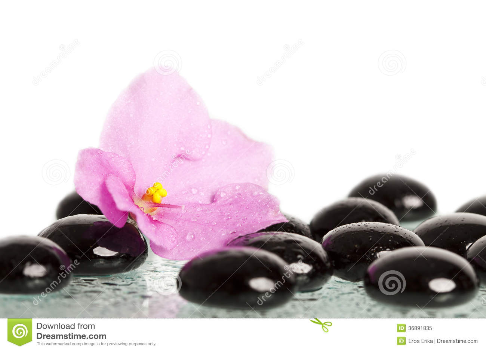 Download Pietre E Fiore Neri Della Stazione Termale Su Bianco Immagine Stock - Immagine di aromatherapy, estetiche: 36891835
