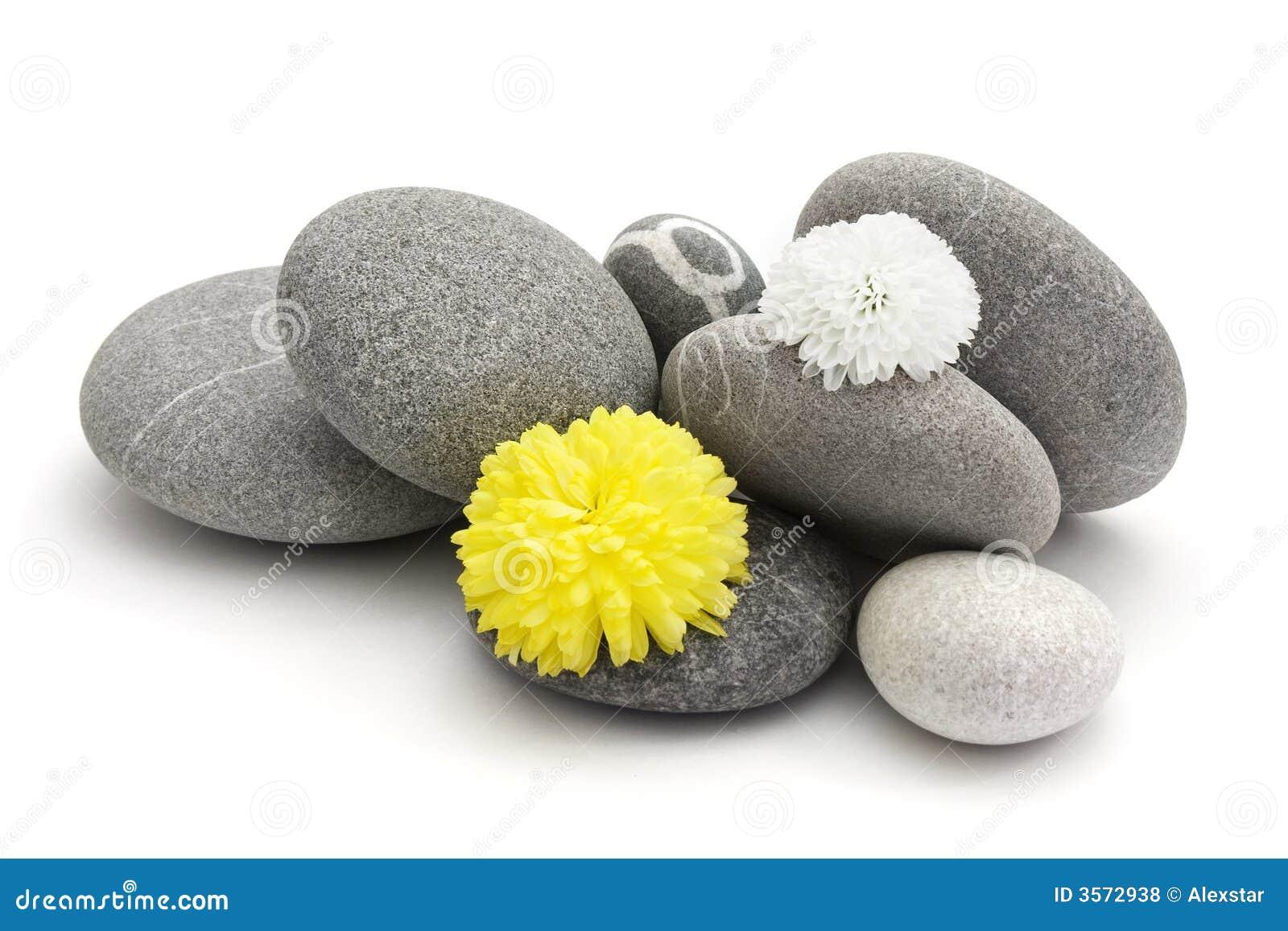 Pietre e fiori