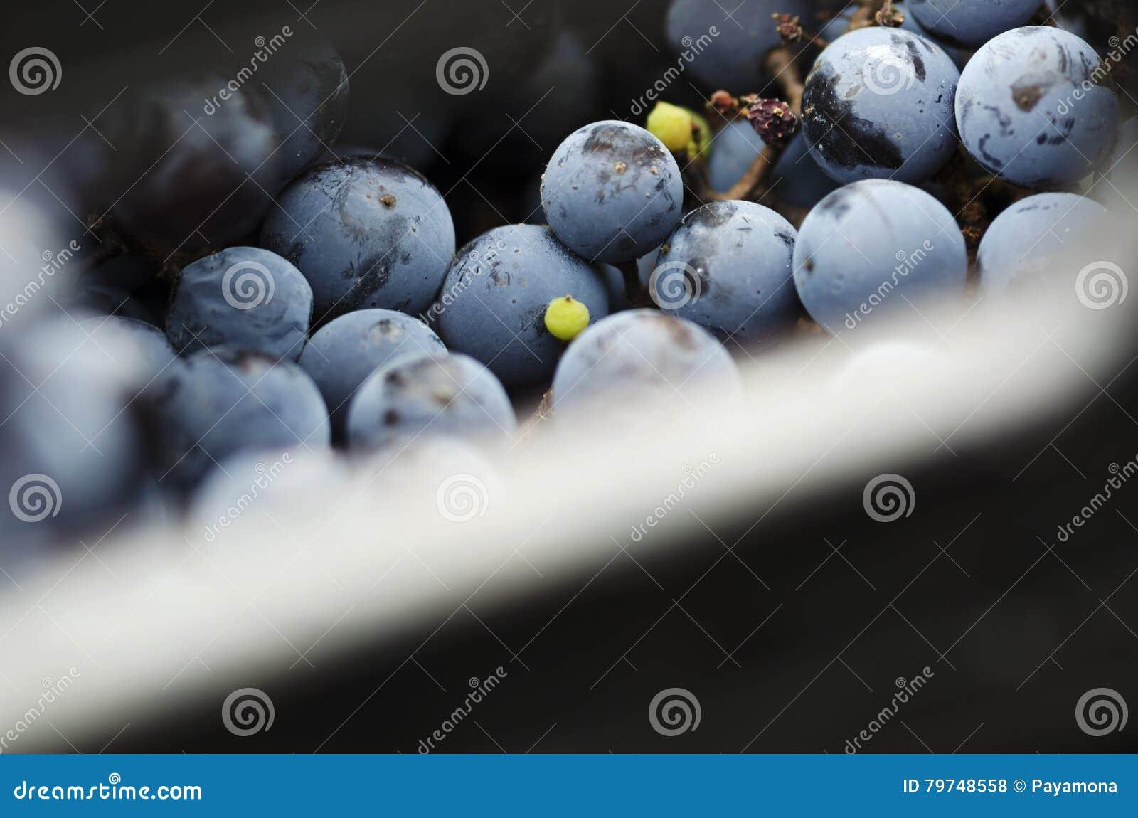 Pieza del cajón con las uvas
