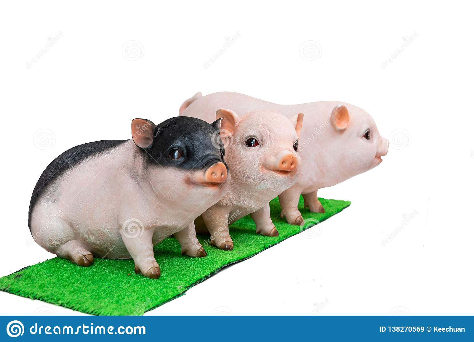 Pig boar in white background, 2019 Chinese New Year zodiac