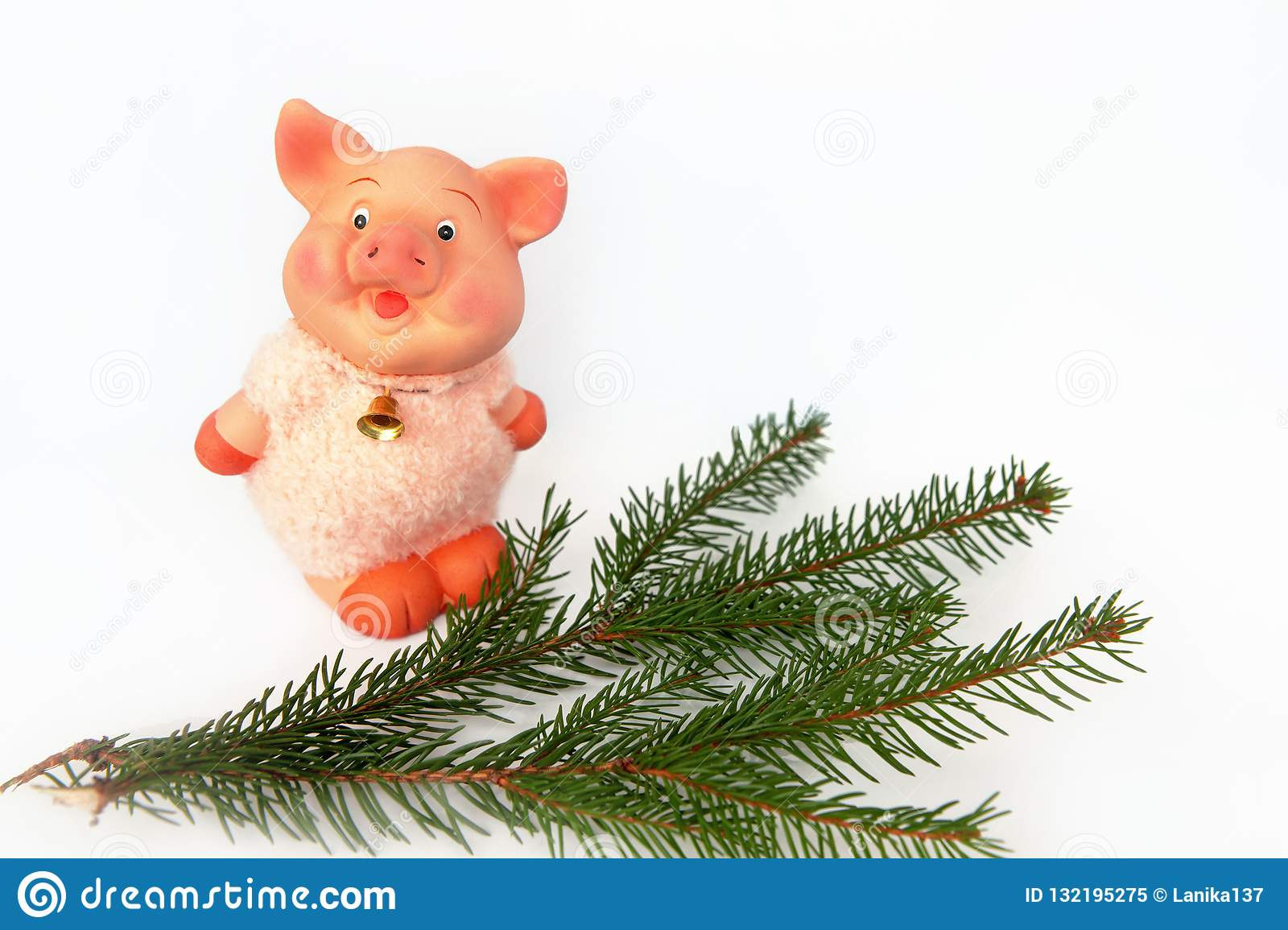 Pig is a Chinese zodiac sign. Symbol of new year