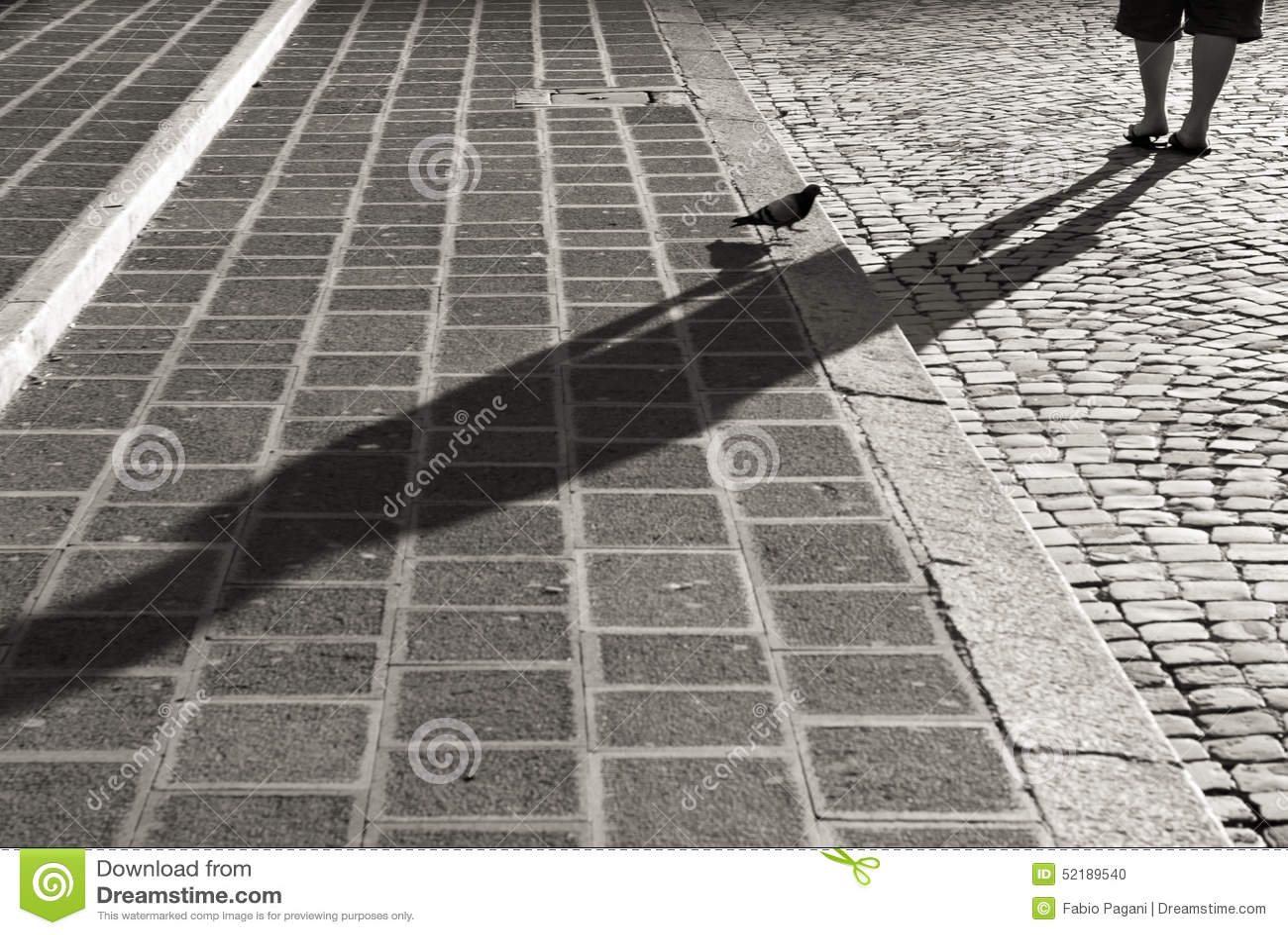 Pigeon sur des escaliers de pavé rond à Rome, noir et blanc