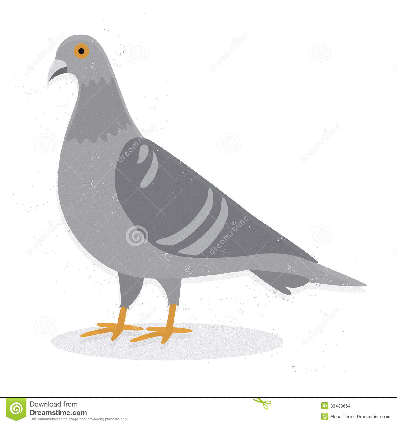 Pigeon illustration - photo#3