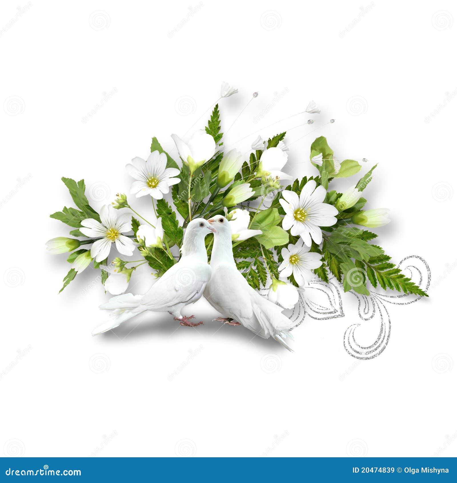 pigeons et bouquet blancs avec les fleurs blanches image. Black Bedroom Furniture Sets. Home Design Ideas
