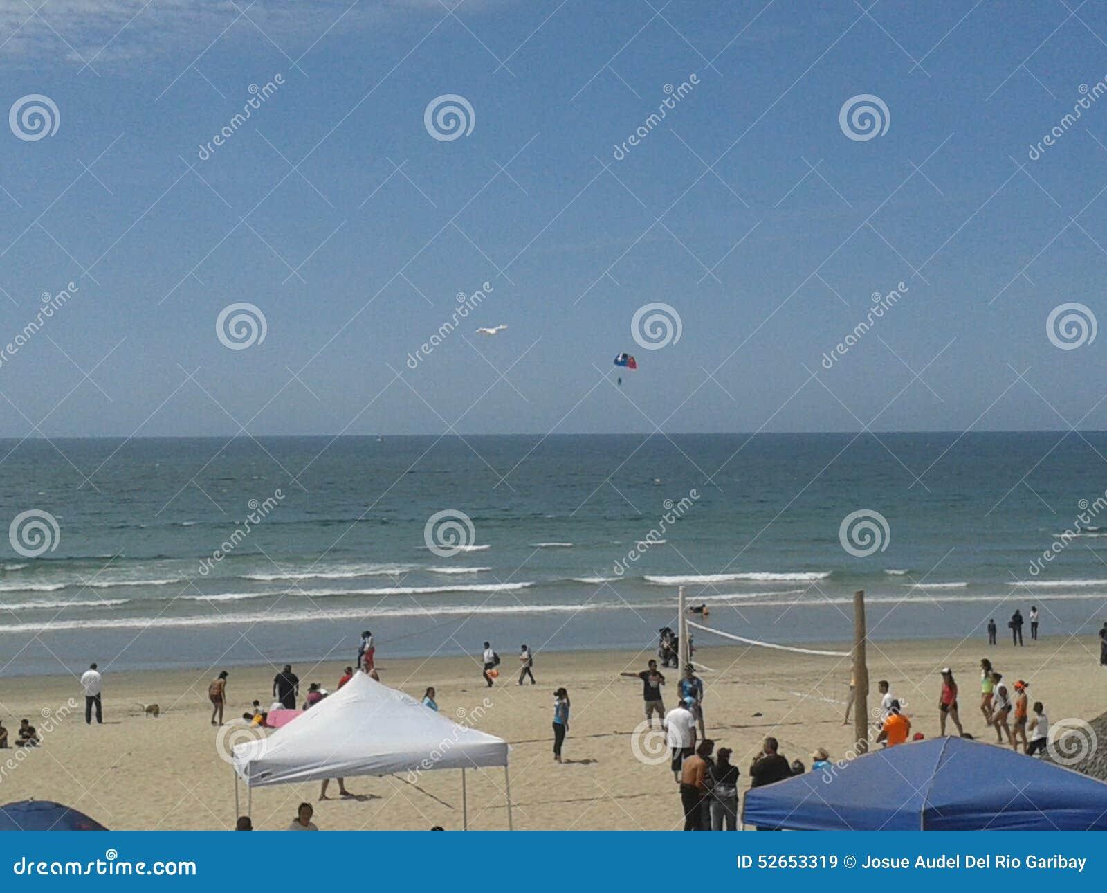 Pigeons volants mouette et pélicans au-dessus de ciel bleu de mer de brise-lames d esplanade de plage d Ensenada de vagues nuageu
