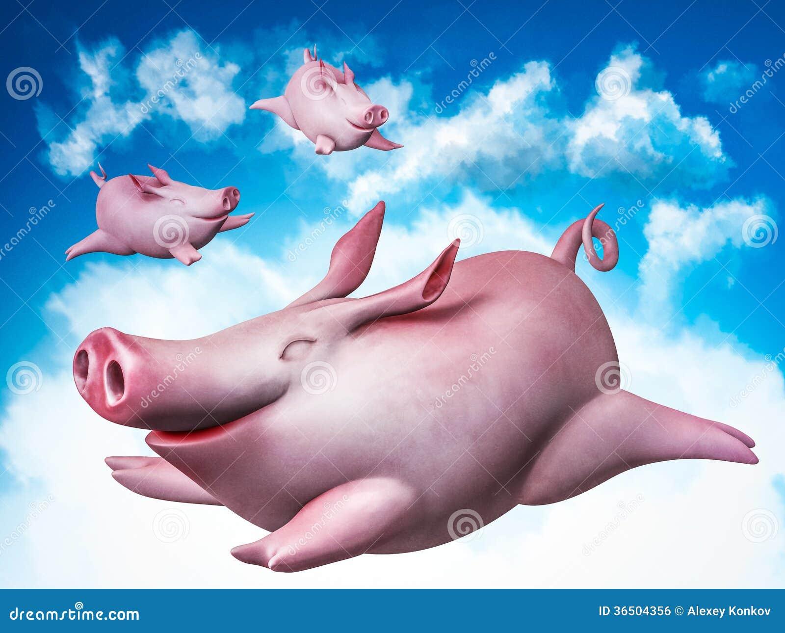 Piggies de vol. Plongeurs de ciel