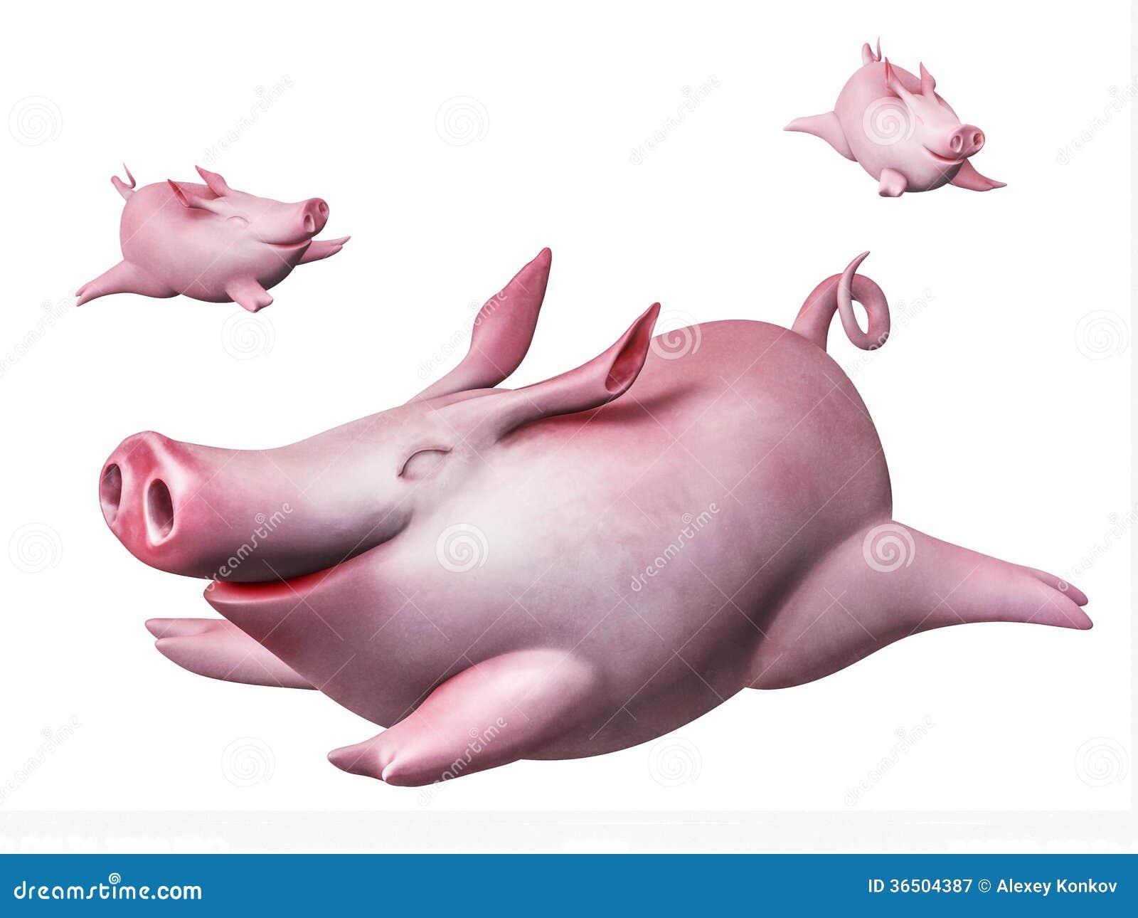 Piggies drôles de vol. Plongeurs de ciel d isolement sur le blanc