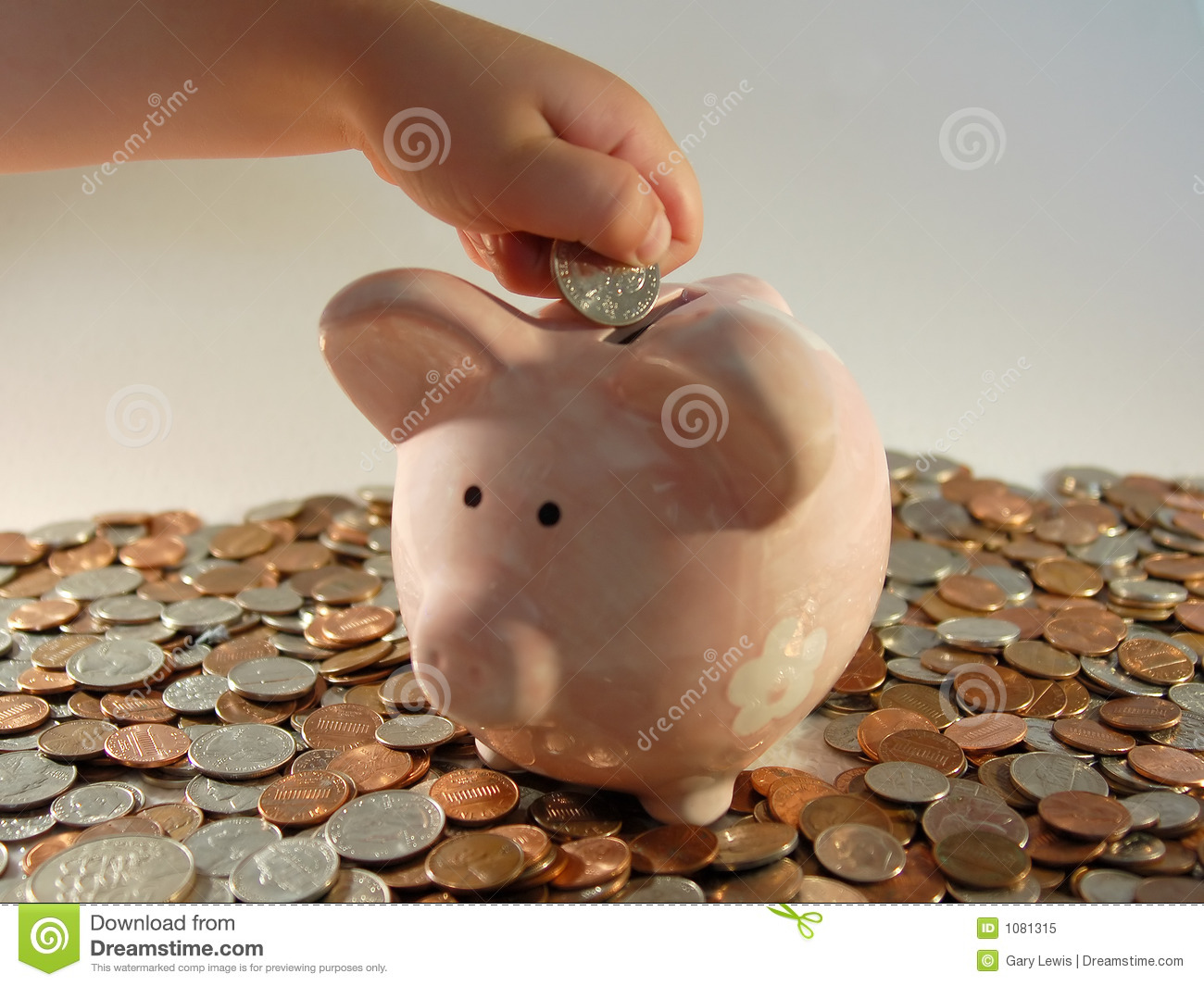 Piggy Bank Coins