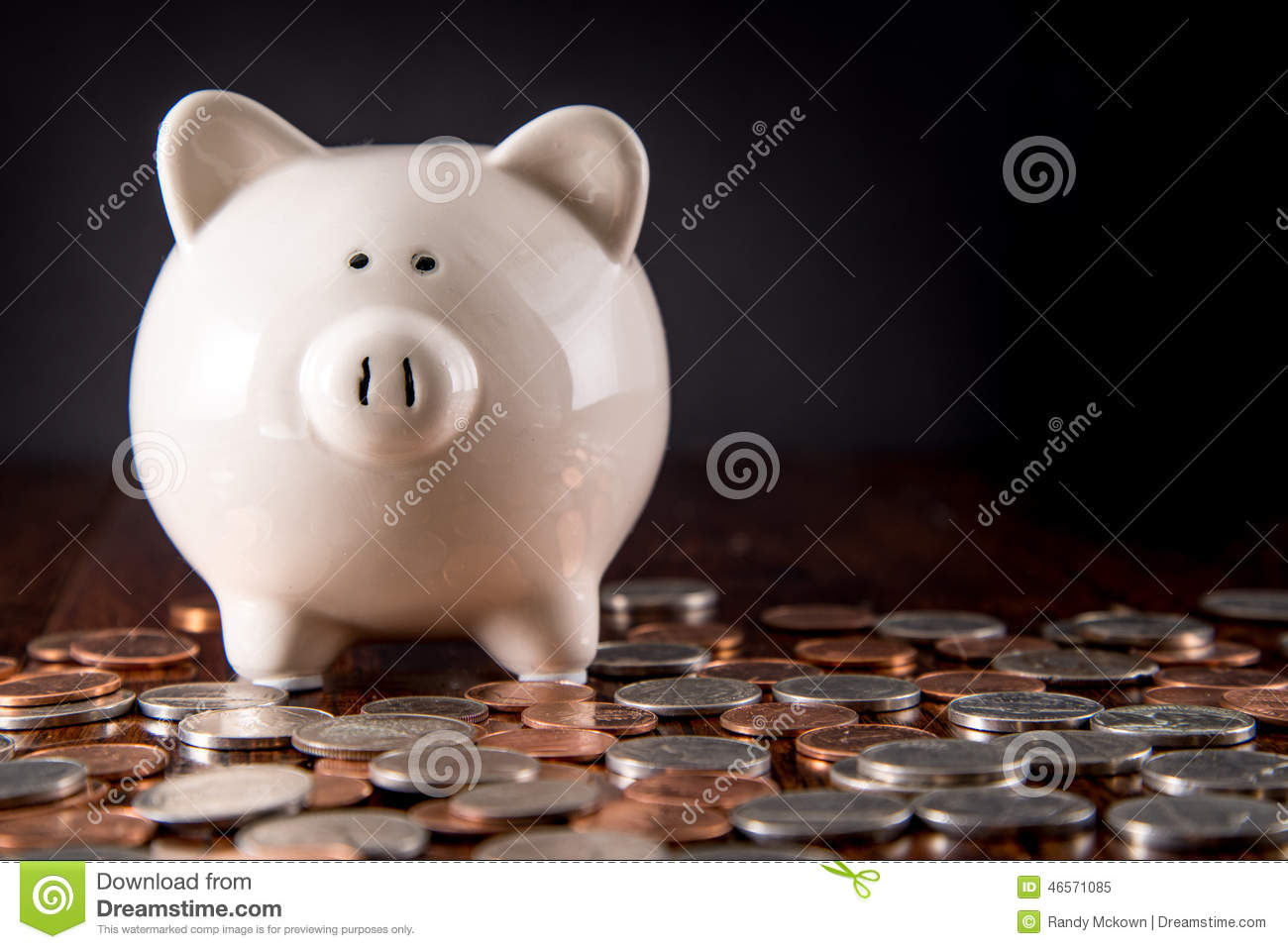 Piggy Bank & Coins