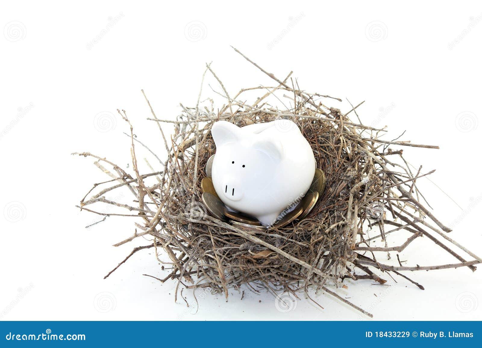 Piggy Bank Nest Egg