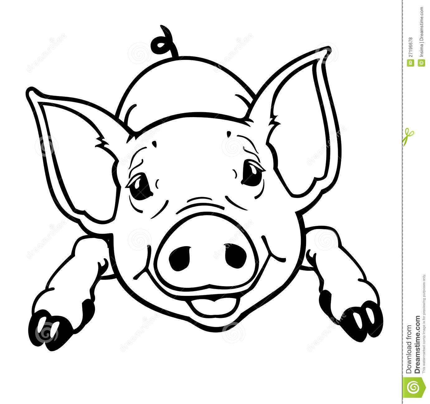 Line Drawing Of A Pig Face : Piglet black and white royalty free stock photos image