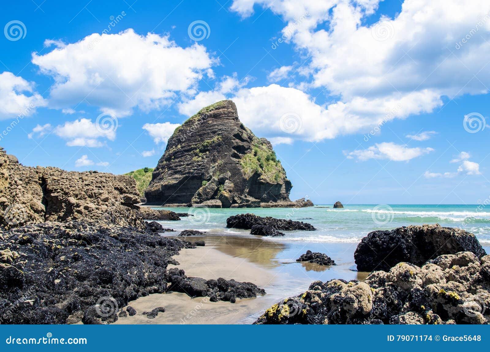Piha Beach in New Zealand.