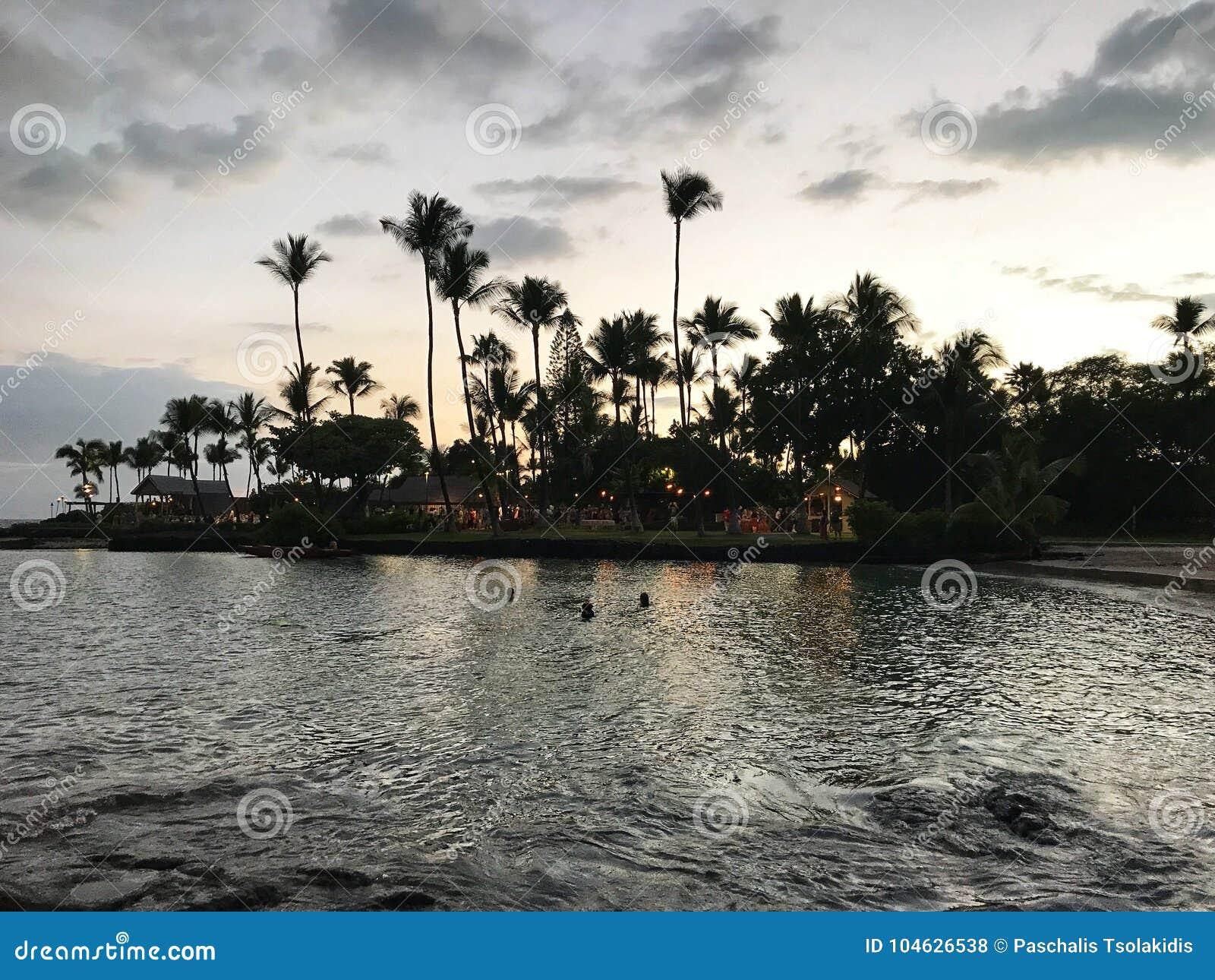 Download Pijnboomstrand bij nacht redactionele stock foto. Afbeelding bestaande uit hawaiiaans - 104626538