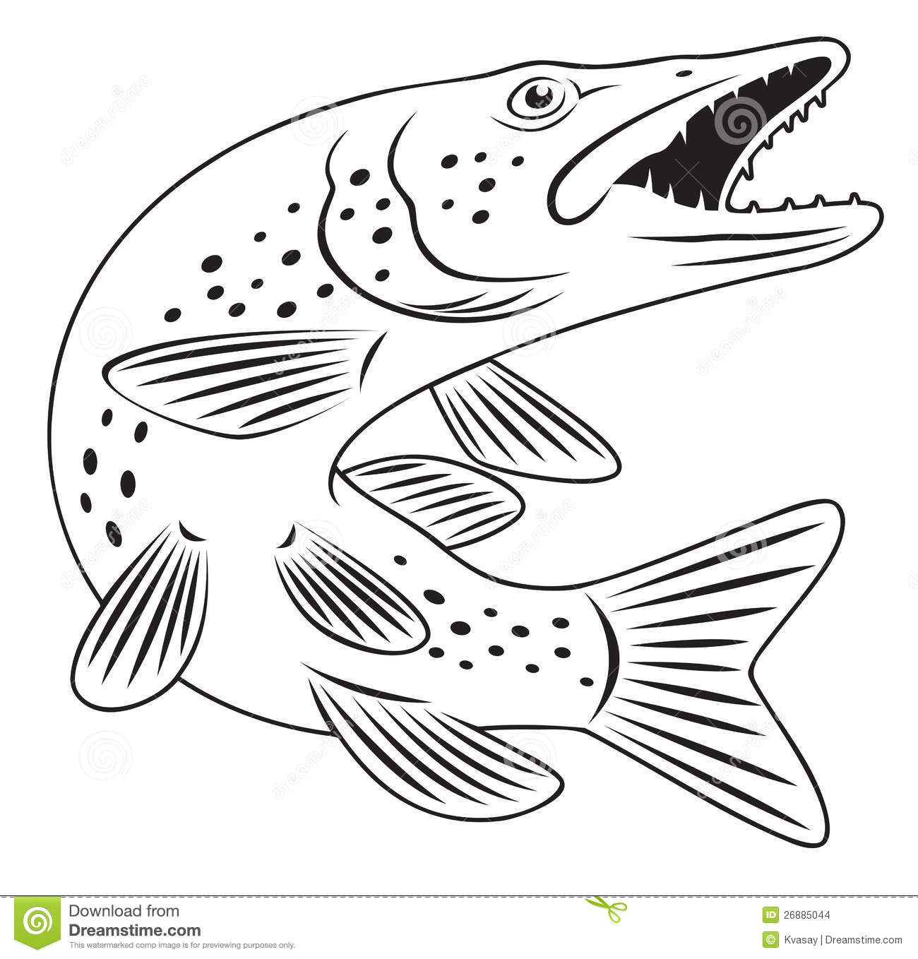 Pike fish stock vector Illustration