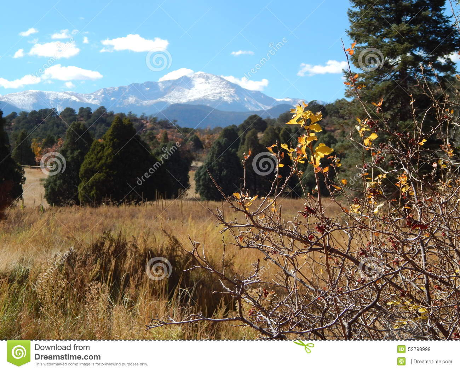 Pikes Peak Fall Stock Photo Image 52798999