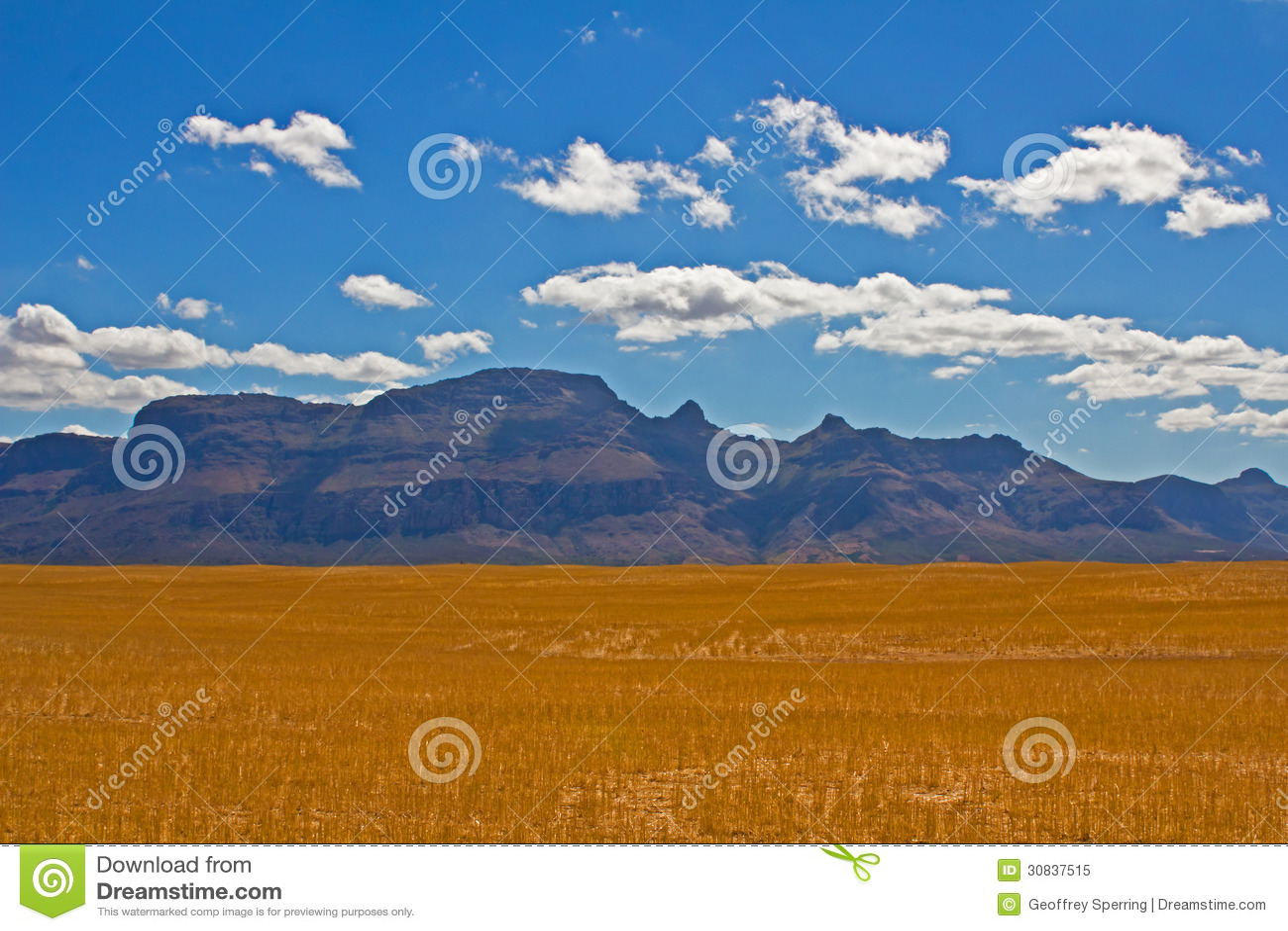 Piketbergberg over droog tarwegebied