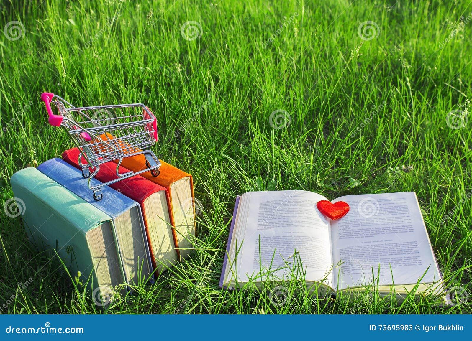 Pila de libros viejos multicolores y de libro abierto en la hierba en la naturaleza, pequeño carro, oficina al aire libre