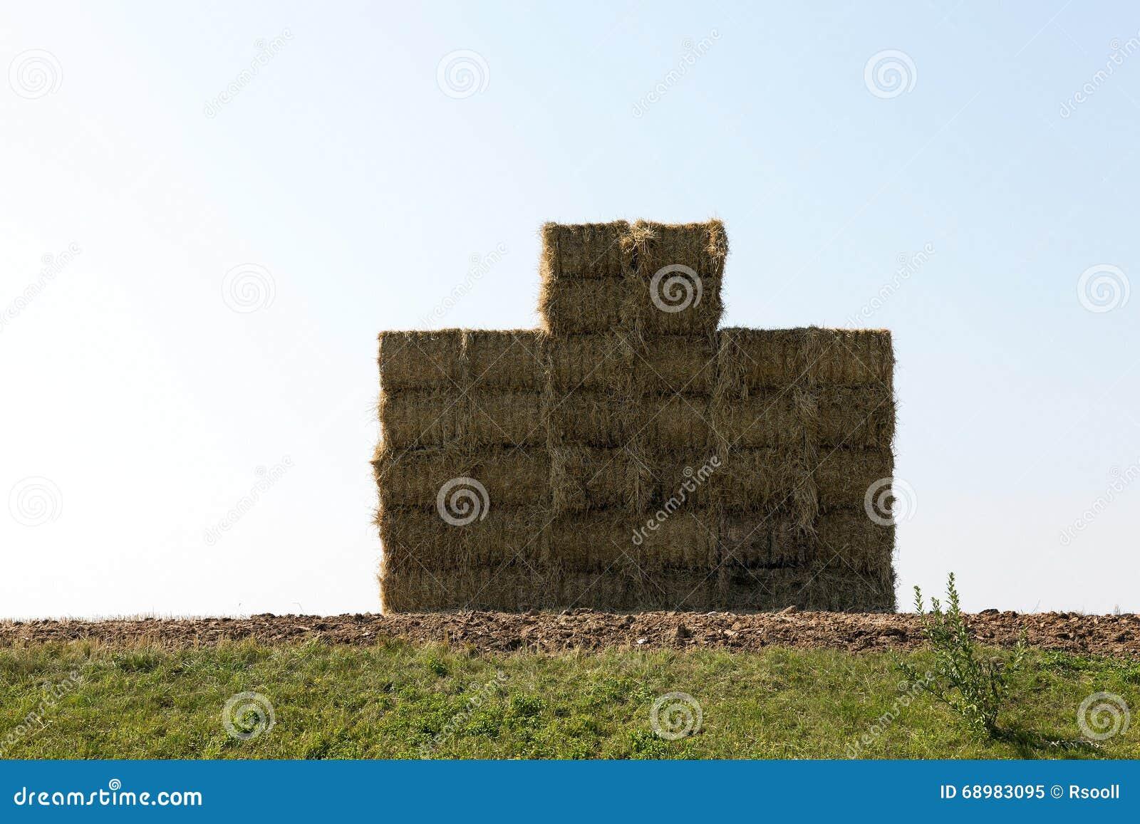 Pila de paja, trigo