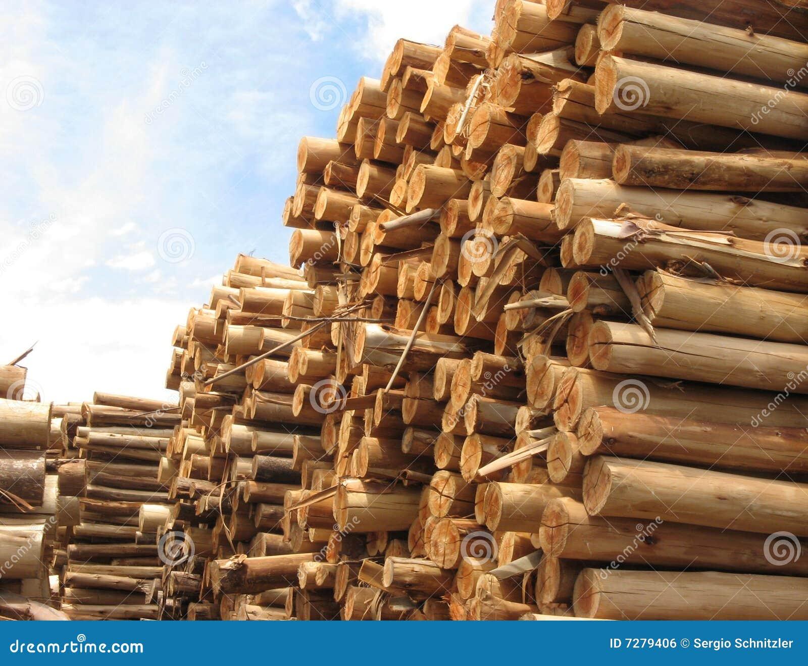 Pila de troncos para el papel